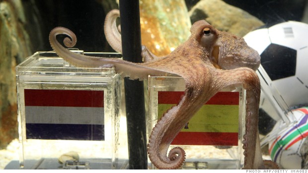 Paul the Octopus predicted Spain's 2010 World Cup victory. Can Goldman predict the winner for 2014?