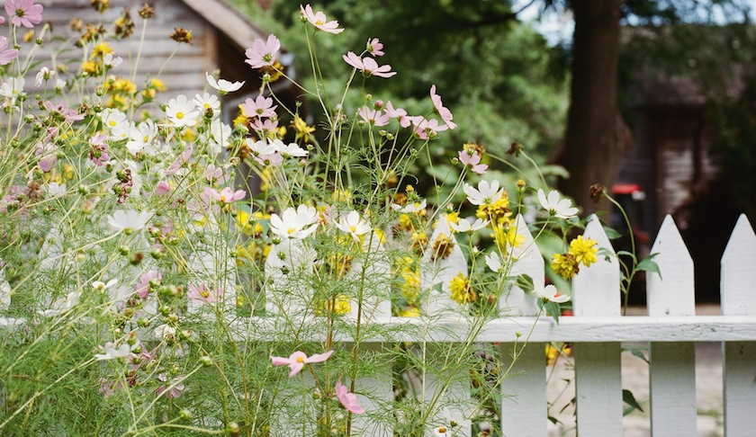 A picket fence