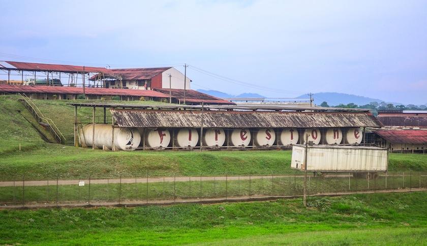 Firestone's rubber plantation in Liberia