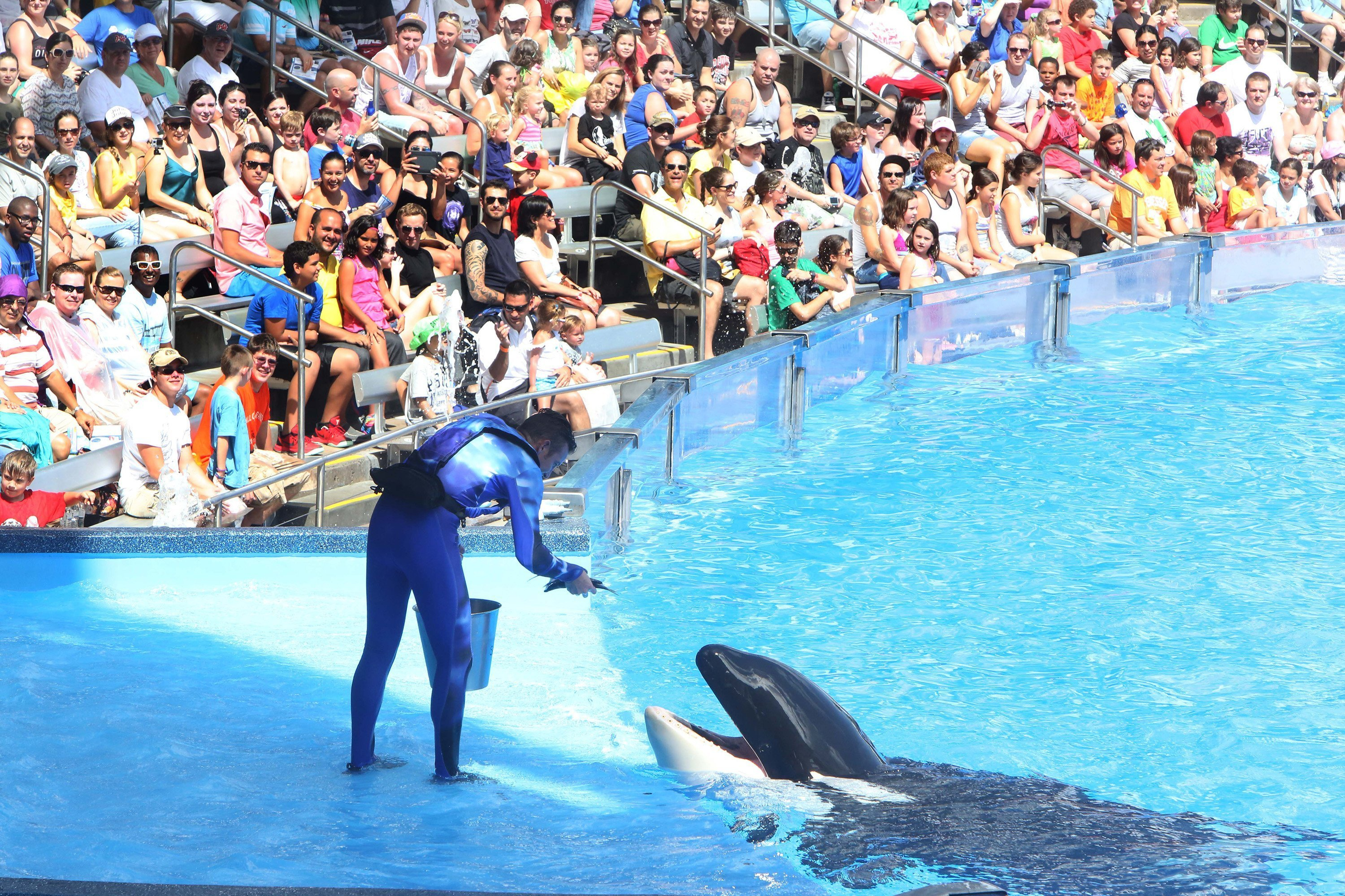 Some aquariums scaling back amid controversy