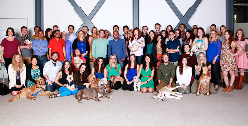 DogVacay staff and their dogs in 2014.