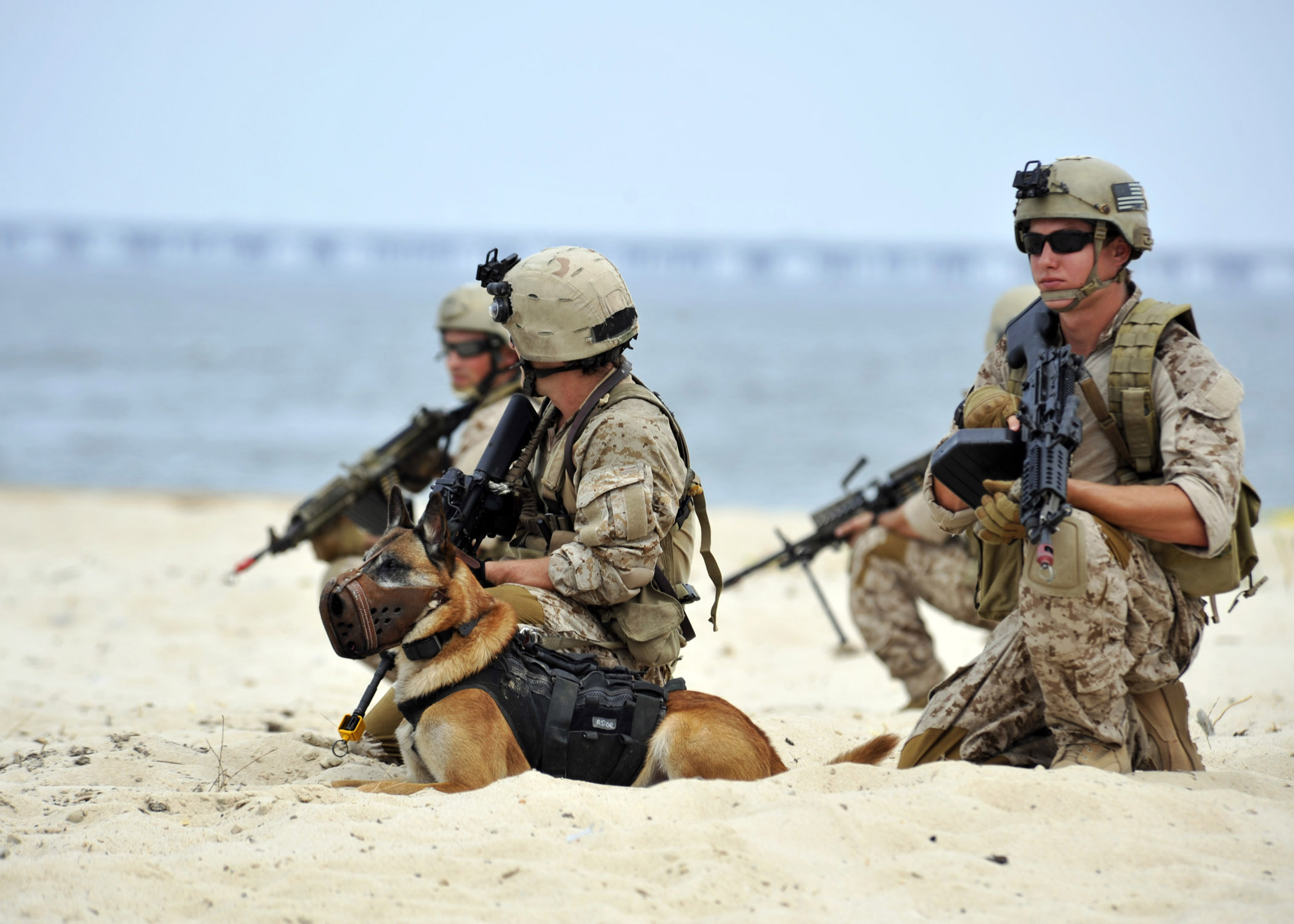 U.S. Navy SEAL platoon 2010