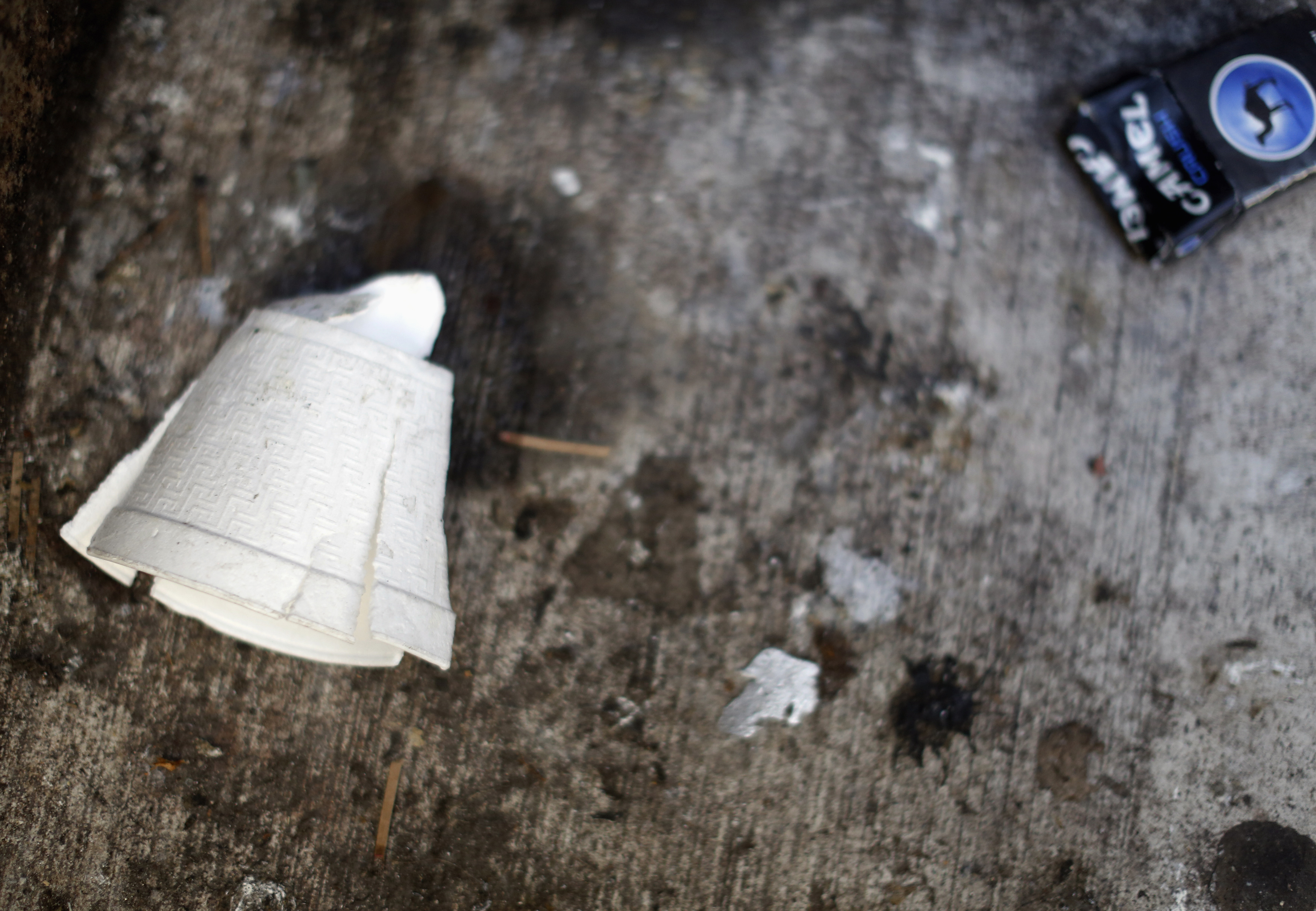 A crushed Styrofoam coffee cup lays on the ground in New York