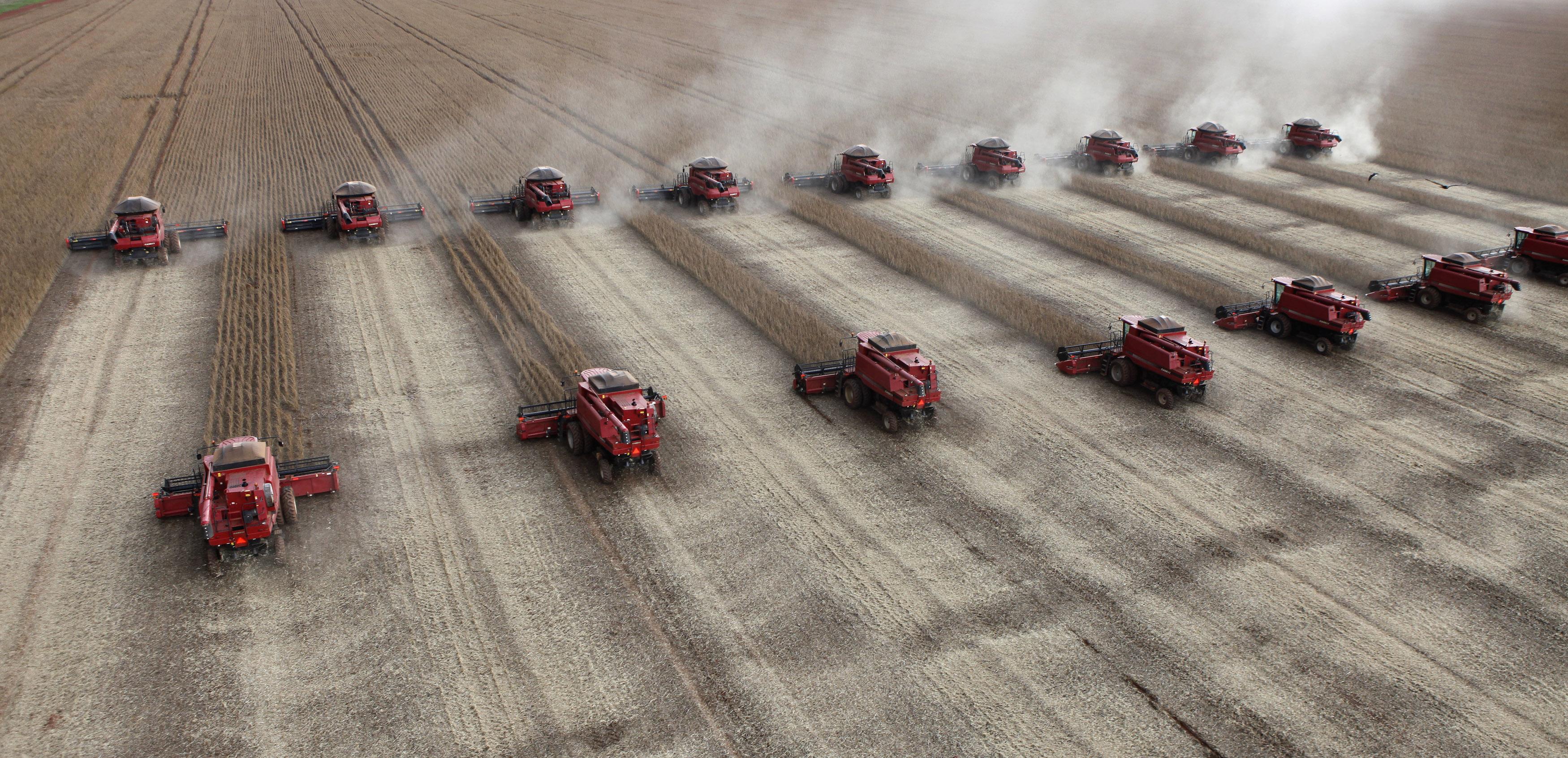 Workers harvest soybeans in a farm in Tangara da Serra in Cuiaba