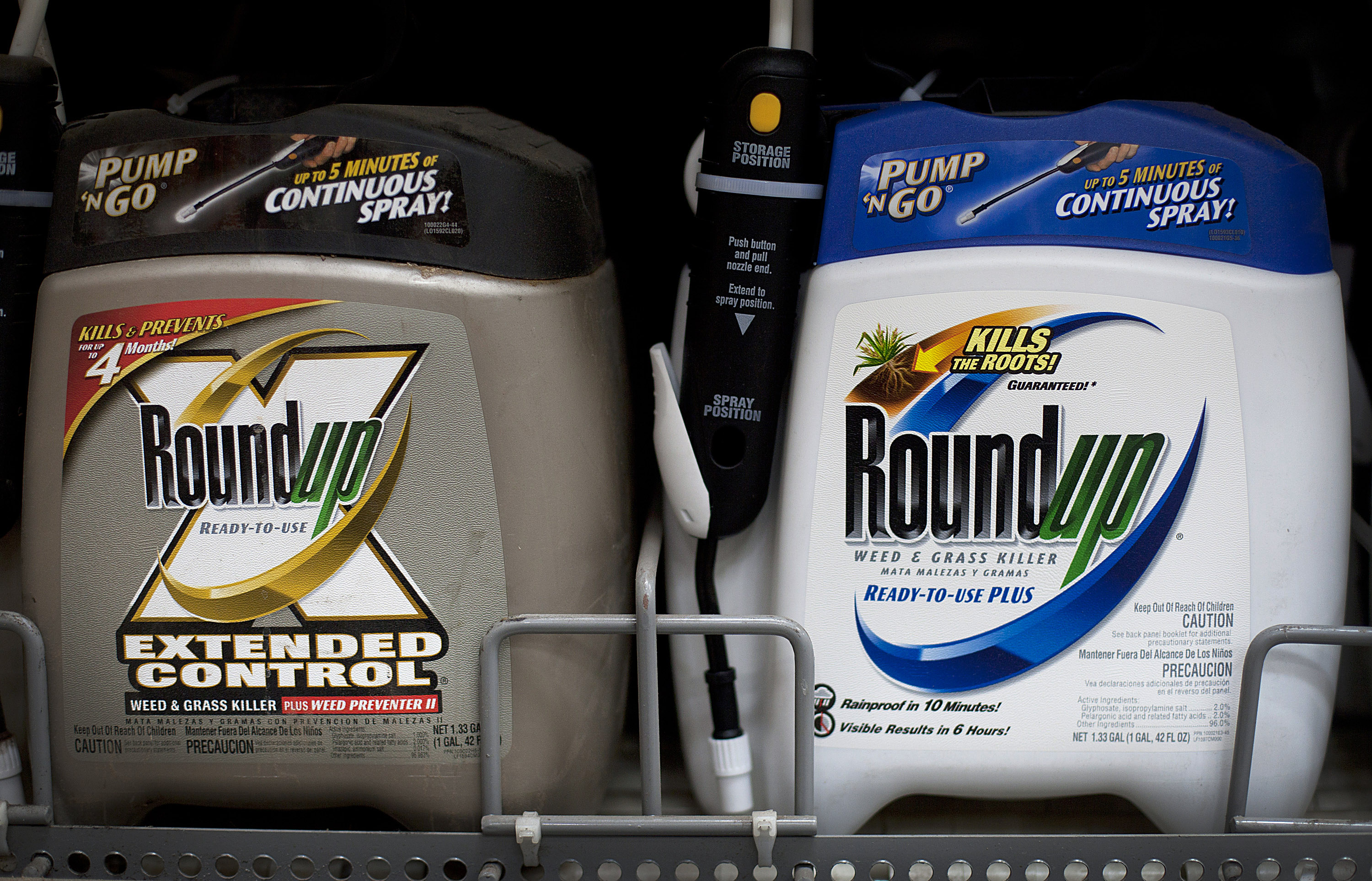 Monsanto Releases First-Quarter Earnings