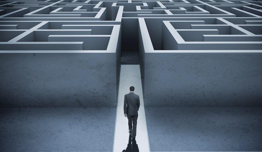 career path maze decisions