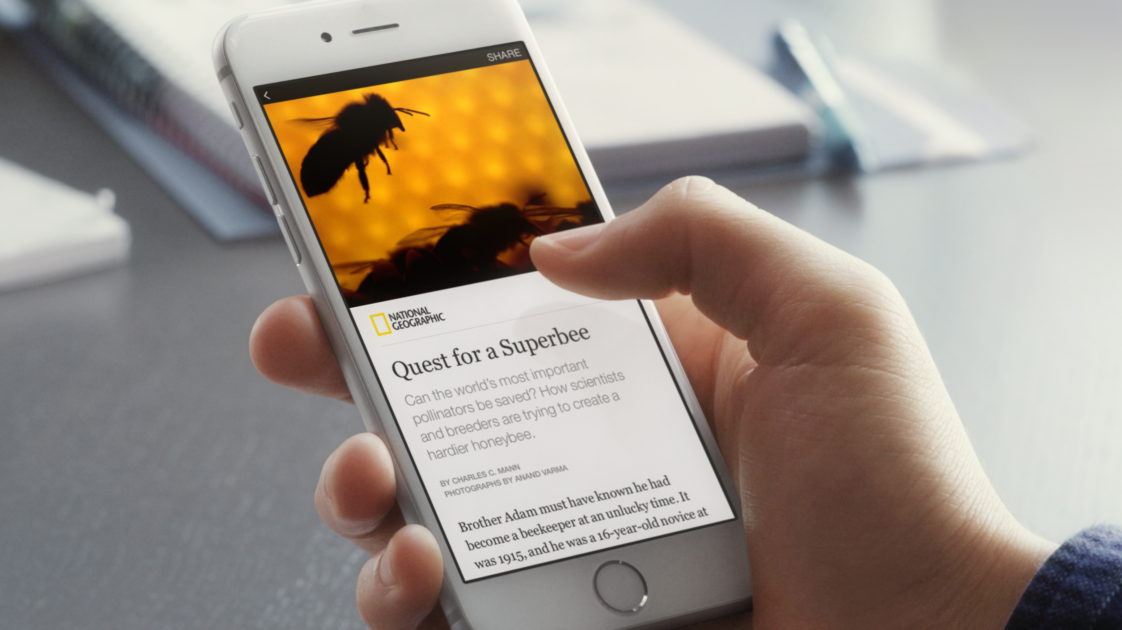 Facebook Instant Article - Article
