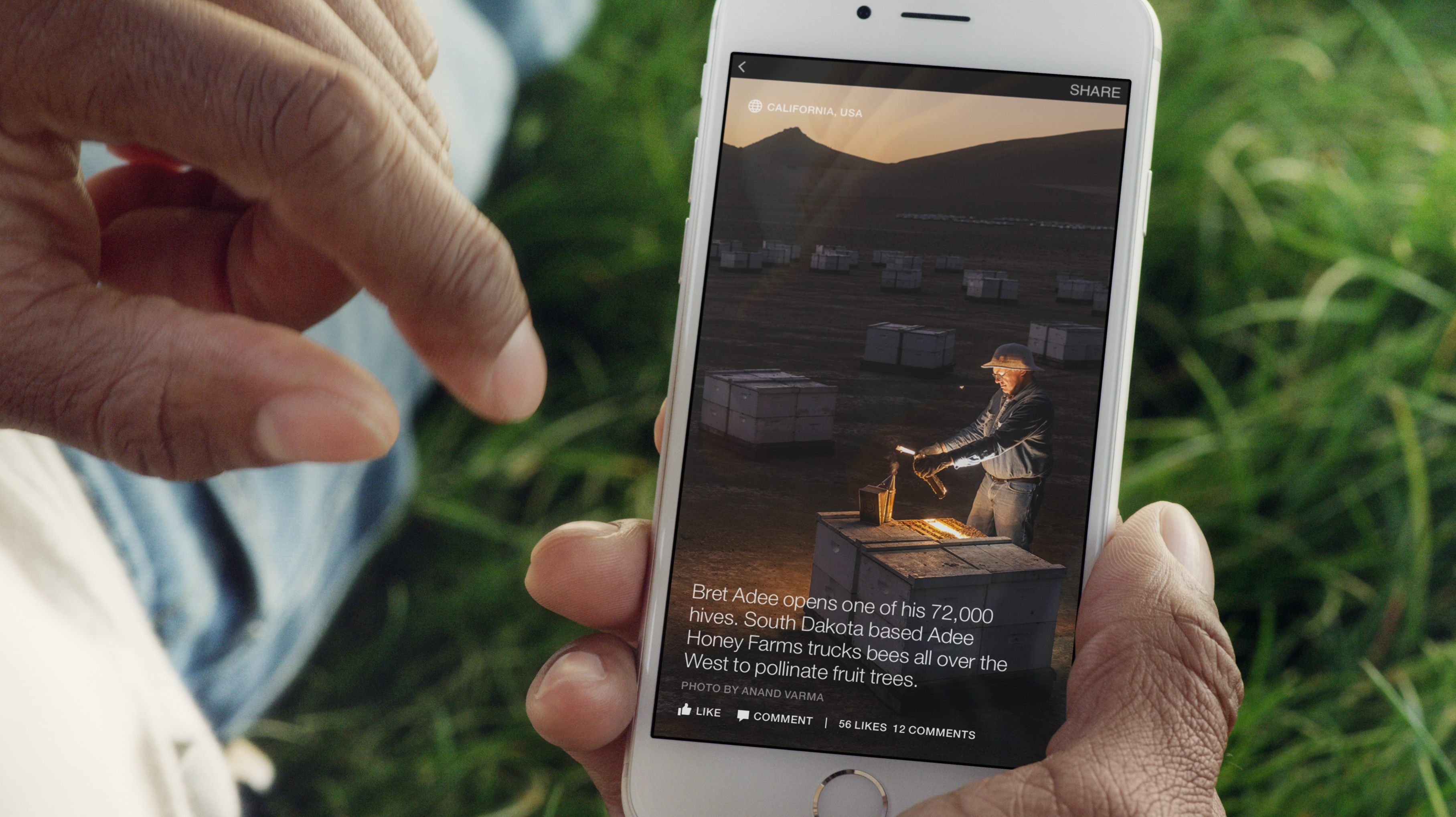 Facebook Instant Article -Photo