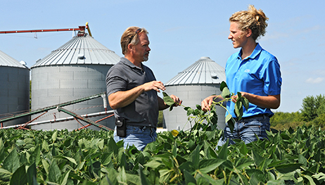 Crop Consulting. Farmers rely on professional CHS agronomists to maximize their yields of soybeans and other crops.