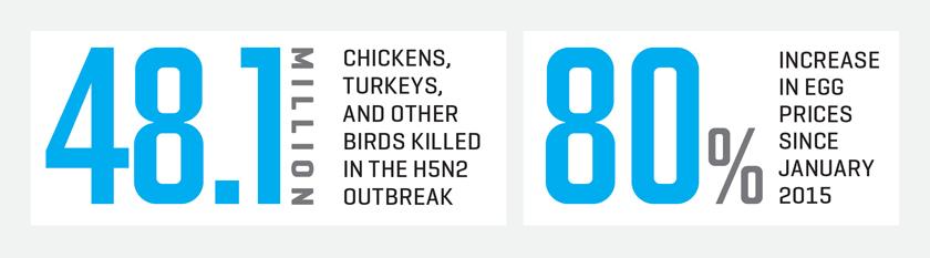 MAC.07.01.15. avian stats