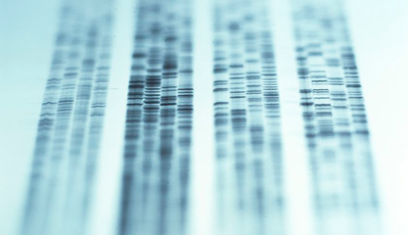 DNA genetic testing (crop)