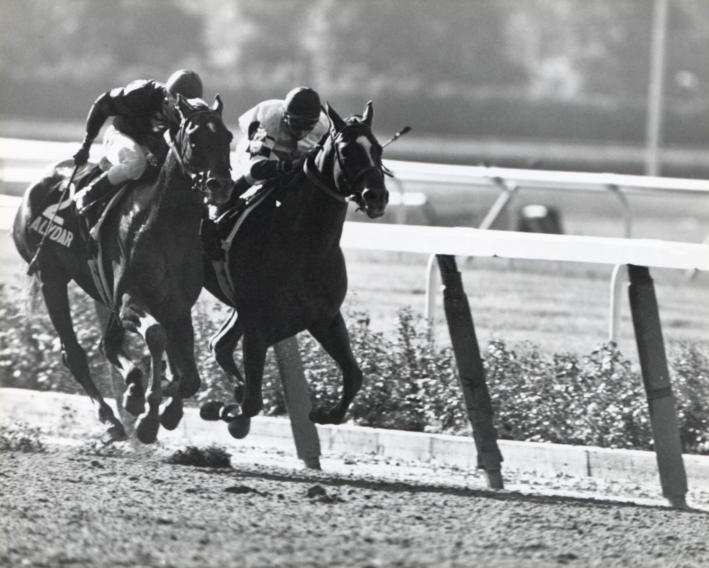 1978 Belmont Stakes