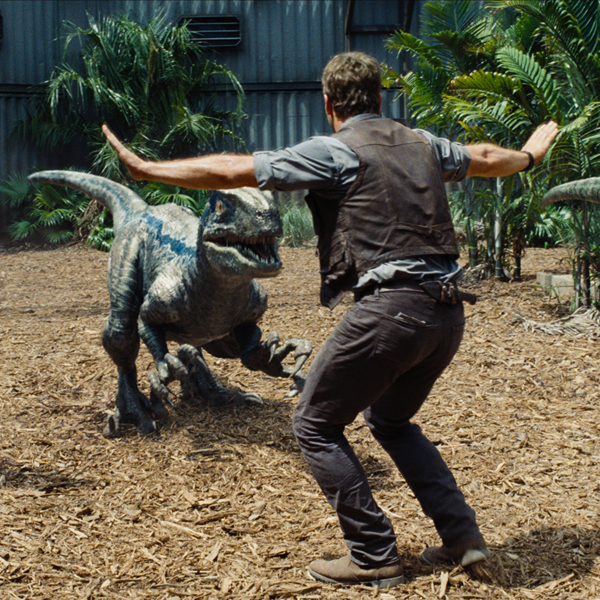 Chris Pratt and a velociraptor, in Universal's 'Jurassic World.'