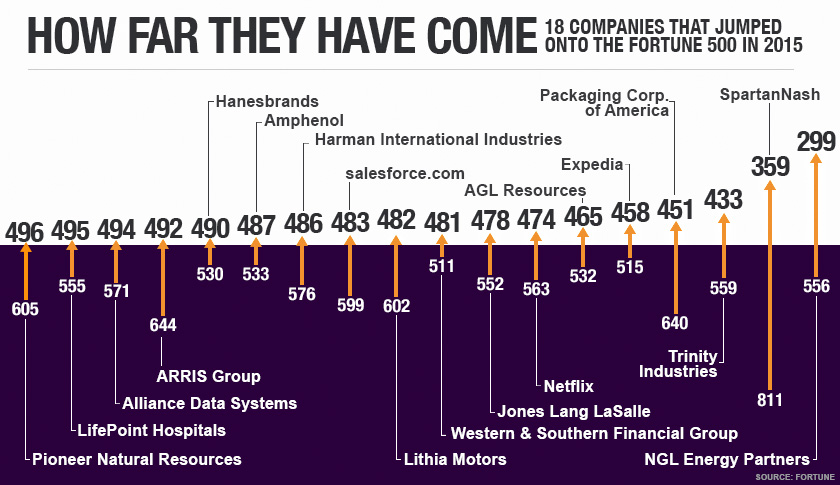 A total of 26 companies were new to the Fortune 500 list in 2015. Here we  look at the 17 newcomers that just missed the cutoff in 2014.