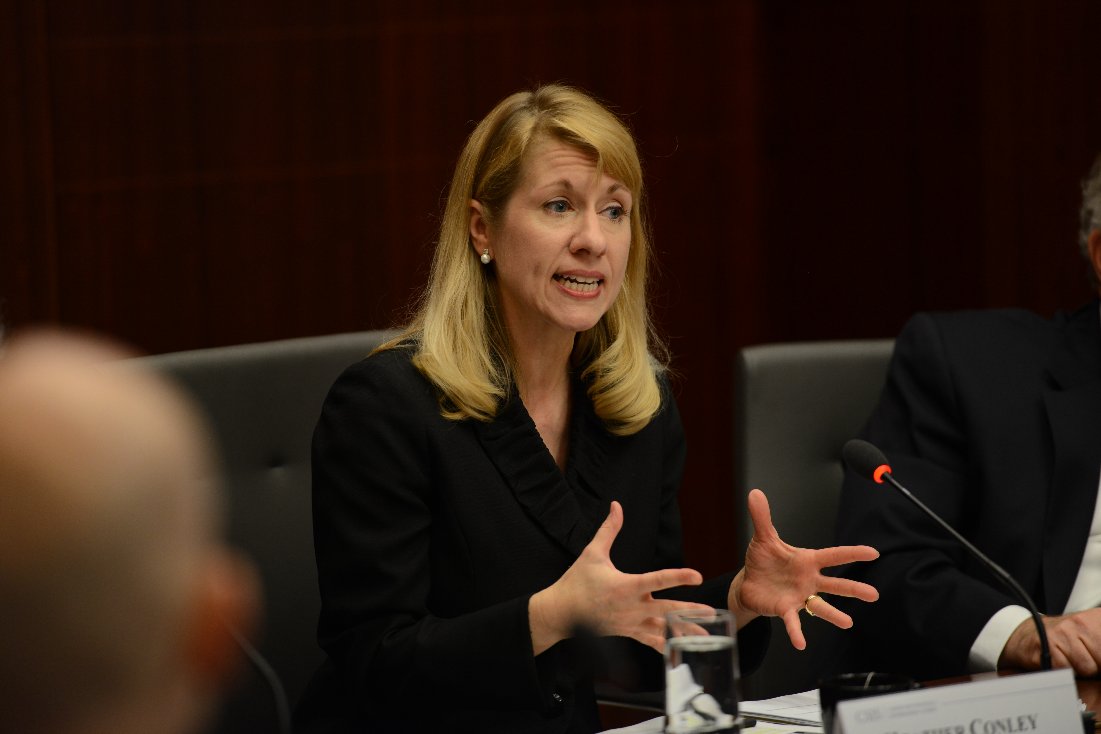 Heather Conley, director of the Europe program at the Center for Strategic and International Studies.