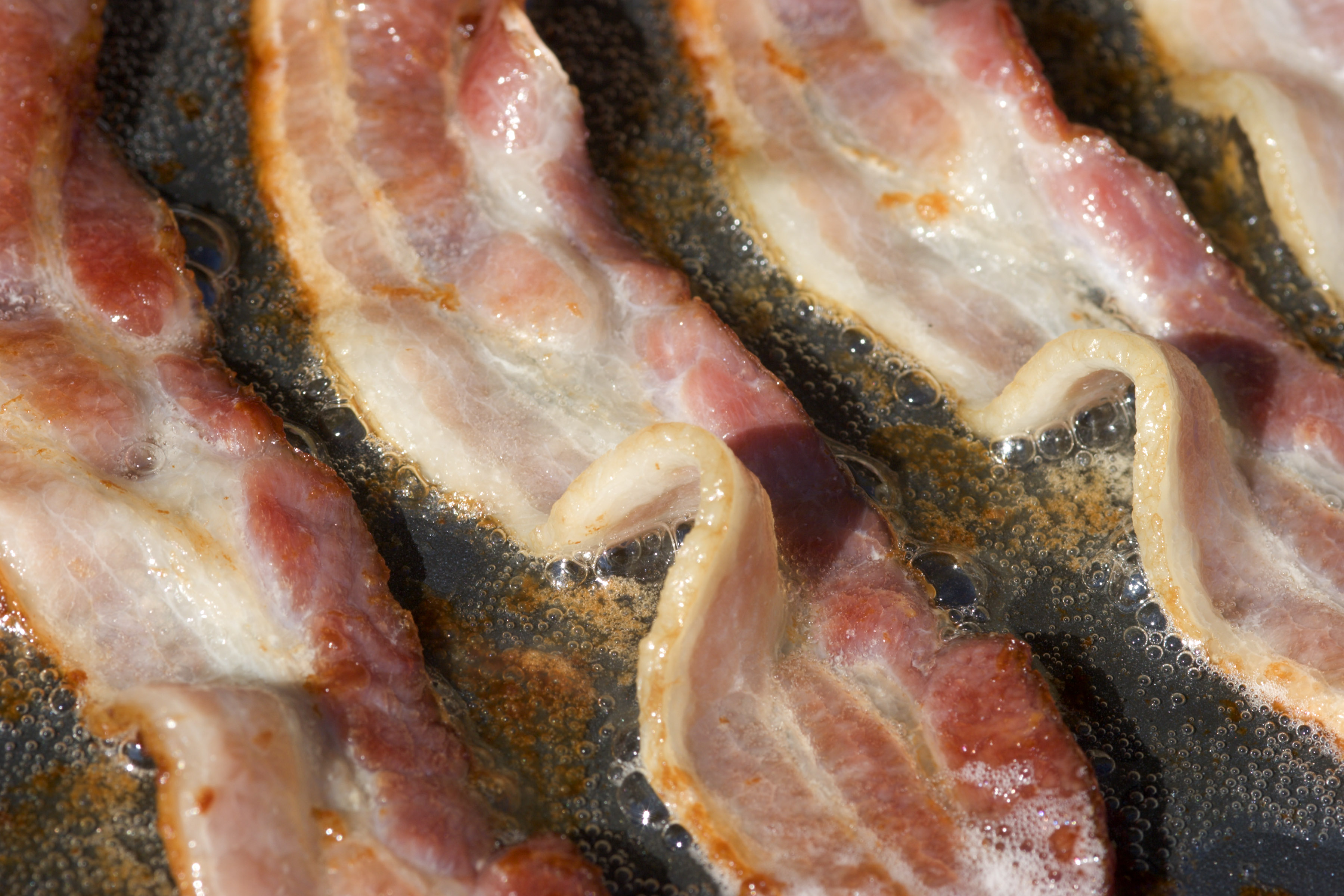 Bacon Frying on a Griddle