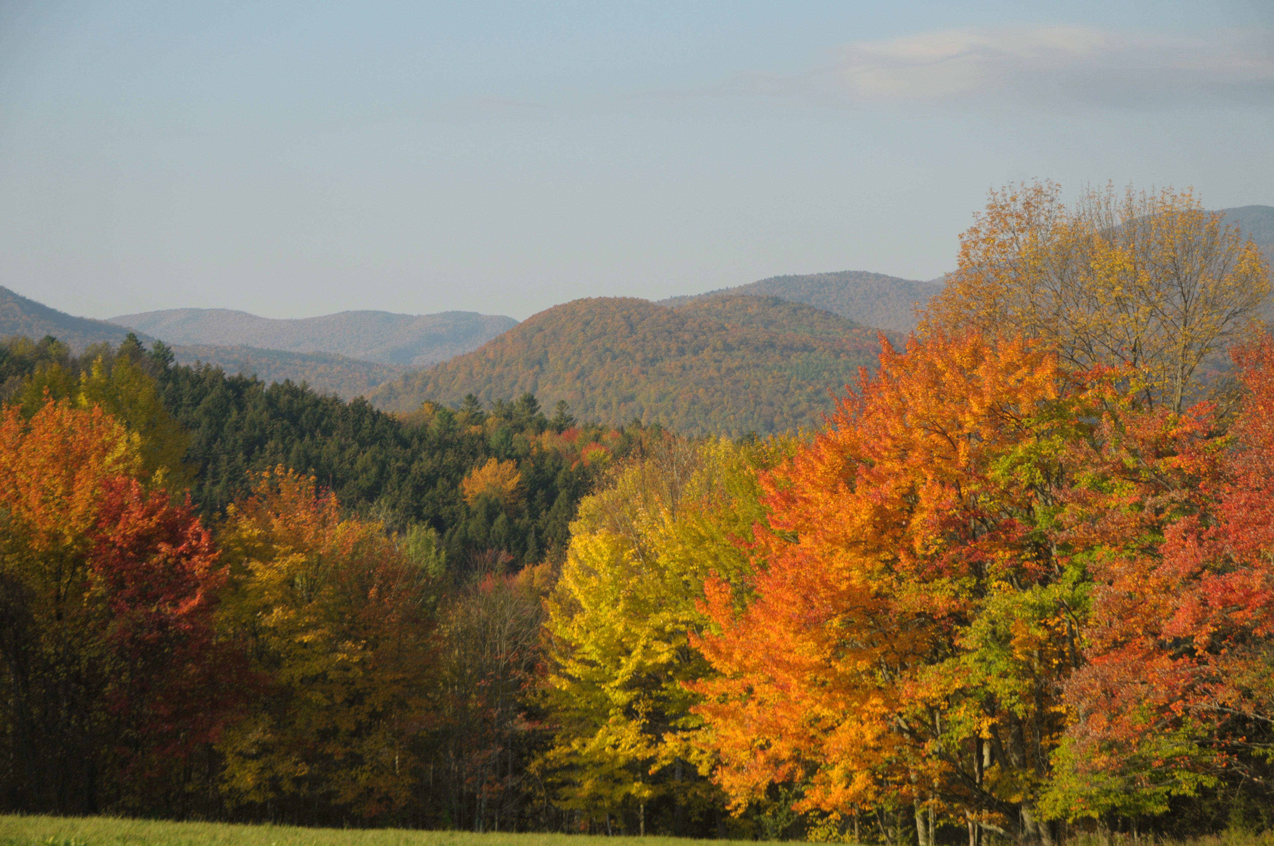Fall Foliage, Waitsfield, VT