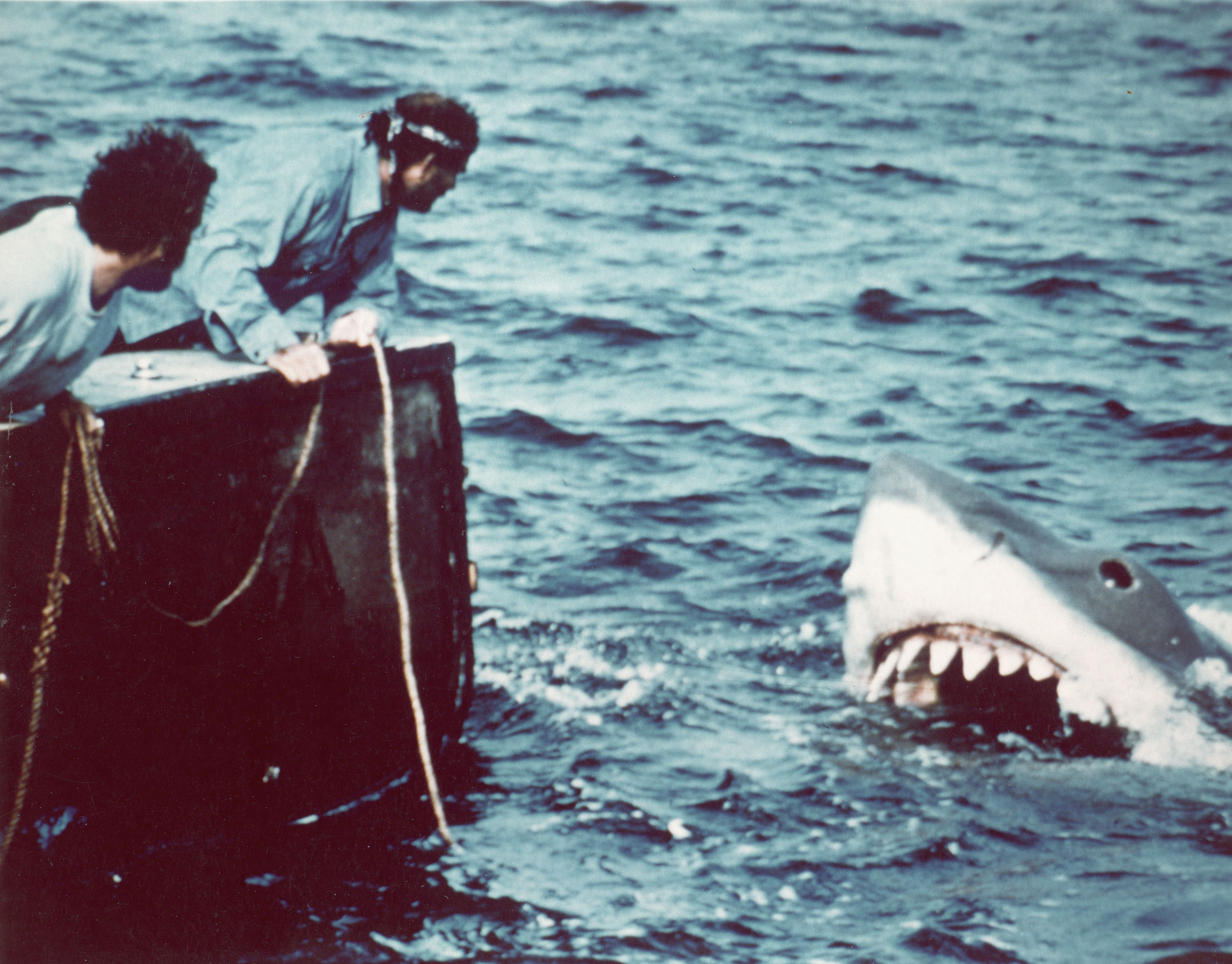 A scene from the movie 'Jaws.'