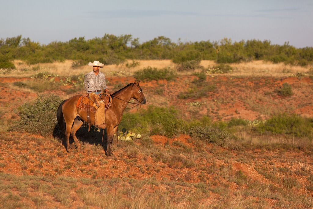 W. T. Waggoner Estate: Venerable, $725 million ranch about to be ...