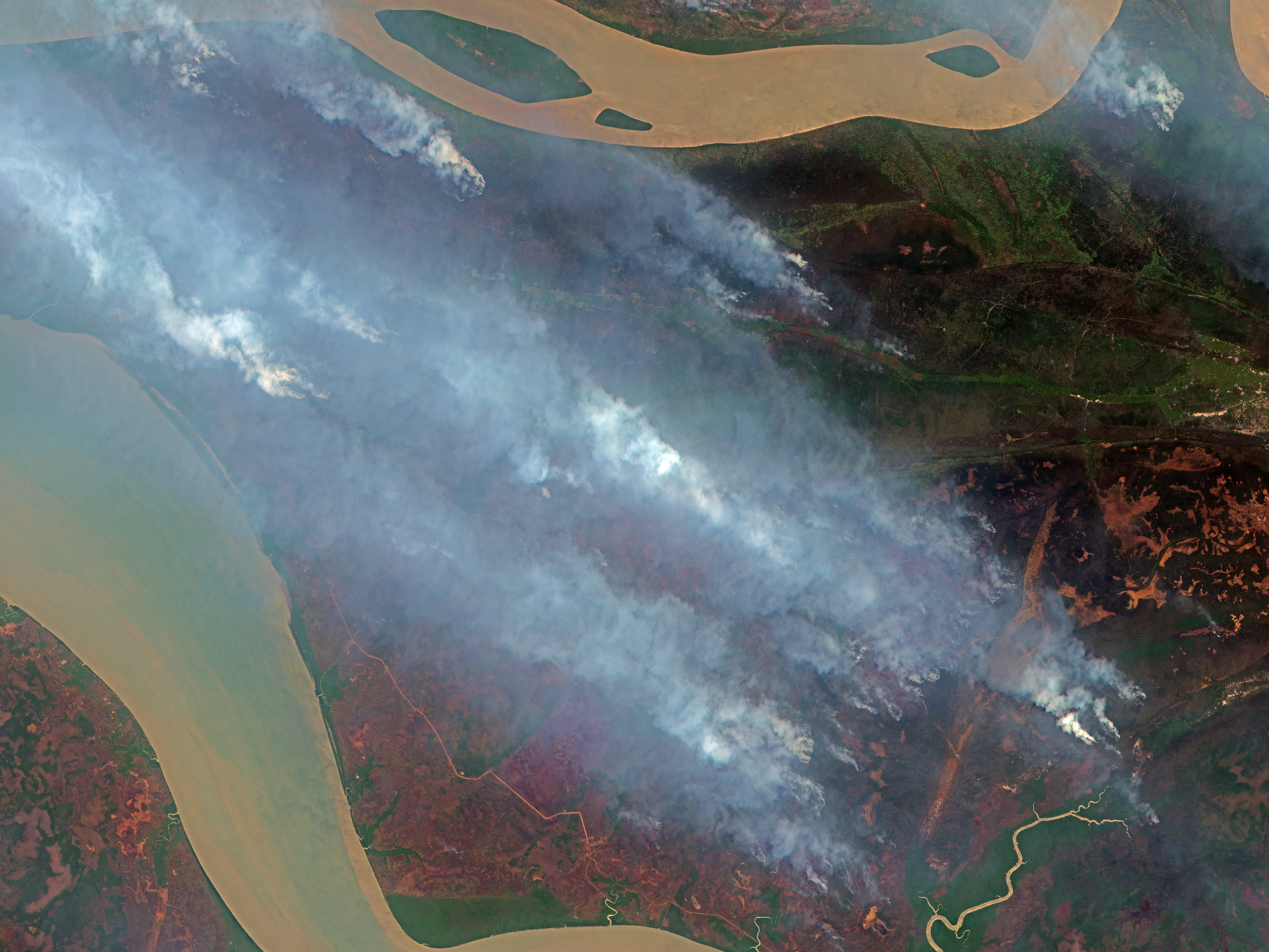 "Forest fires in Indonesia, as seen from a Planet Labs satellite, were set as part of ""slash and burn"" effort to clear farmland, sparking concerns about carbon emissions and climate change. New technology that reads satellite data can detect fires in as little as 15 minutes after they start. Environmentalists are now looking to satellite analytics to spot warning signs of deforestation and prevent it before it happens."