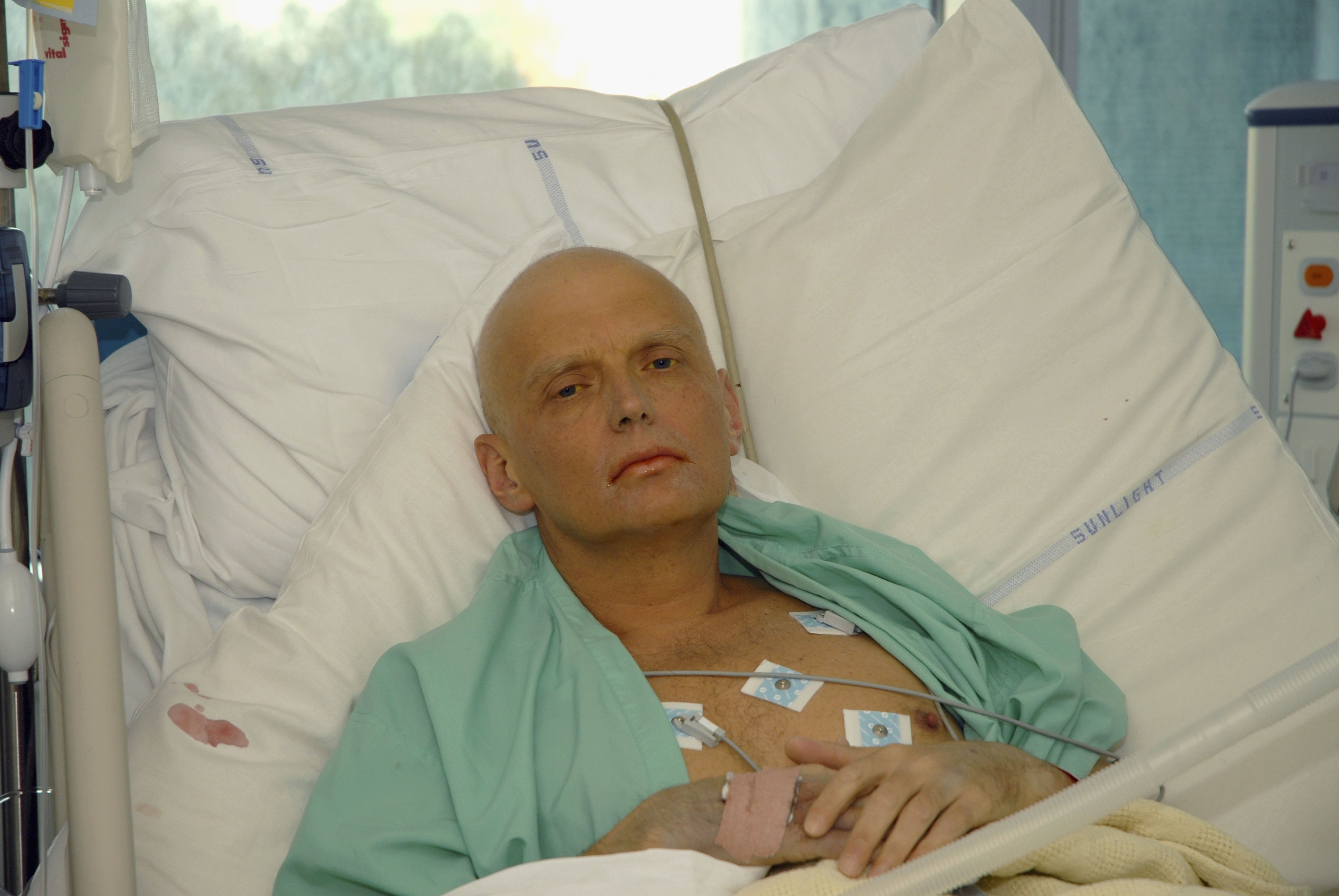 Litvinenko had himself accused Putin of ordering his killing, according to testimony from a friend.