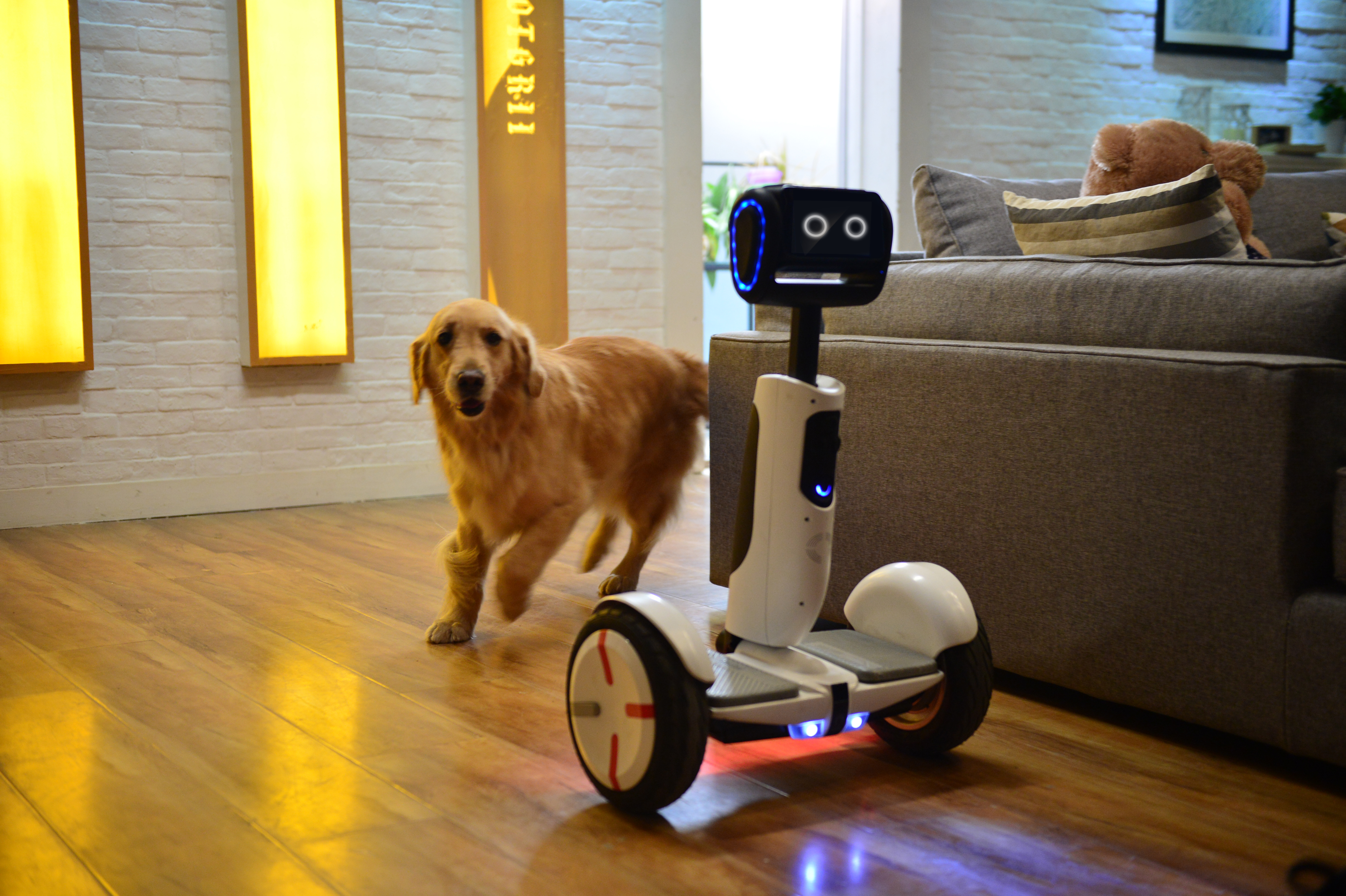 Segway says the company's new home robot, built with Intel and Ninebot will be ready for purchase in the second half of 2016.