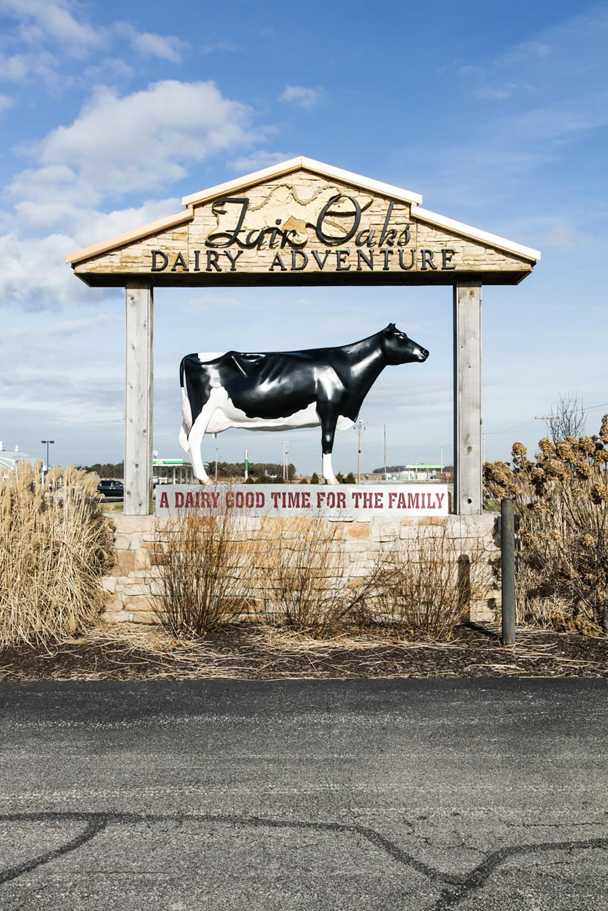 Dairy.Oaks.Farm.5
