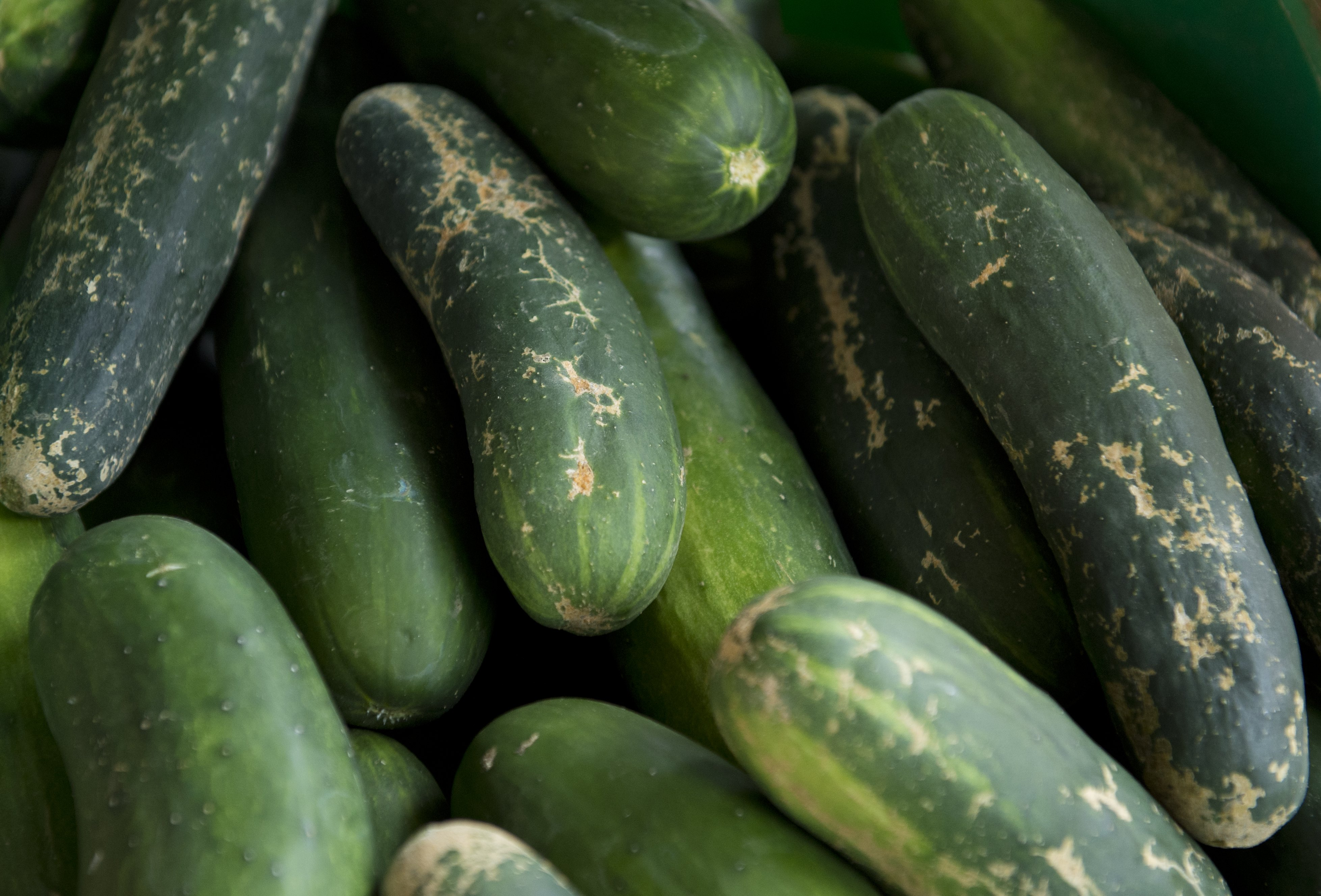 US-LIFESTYLE-FOOD-FRUITS AND VEGETABLES