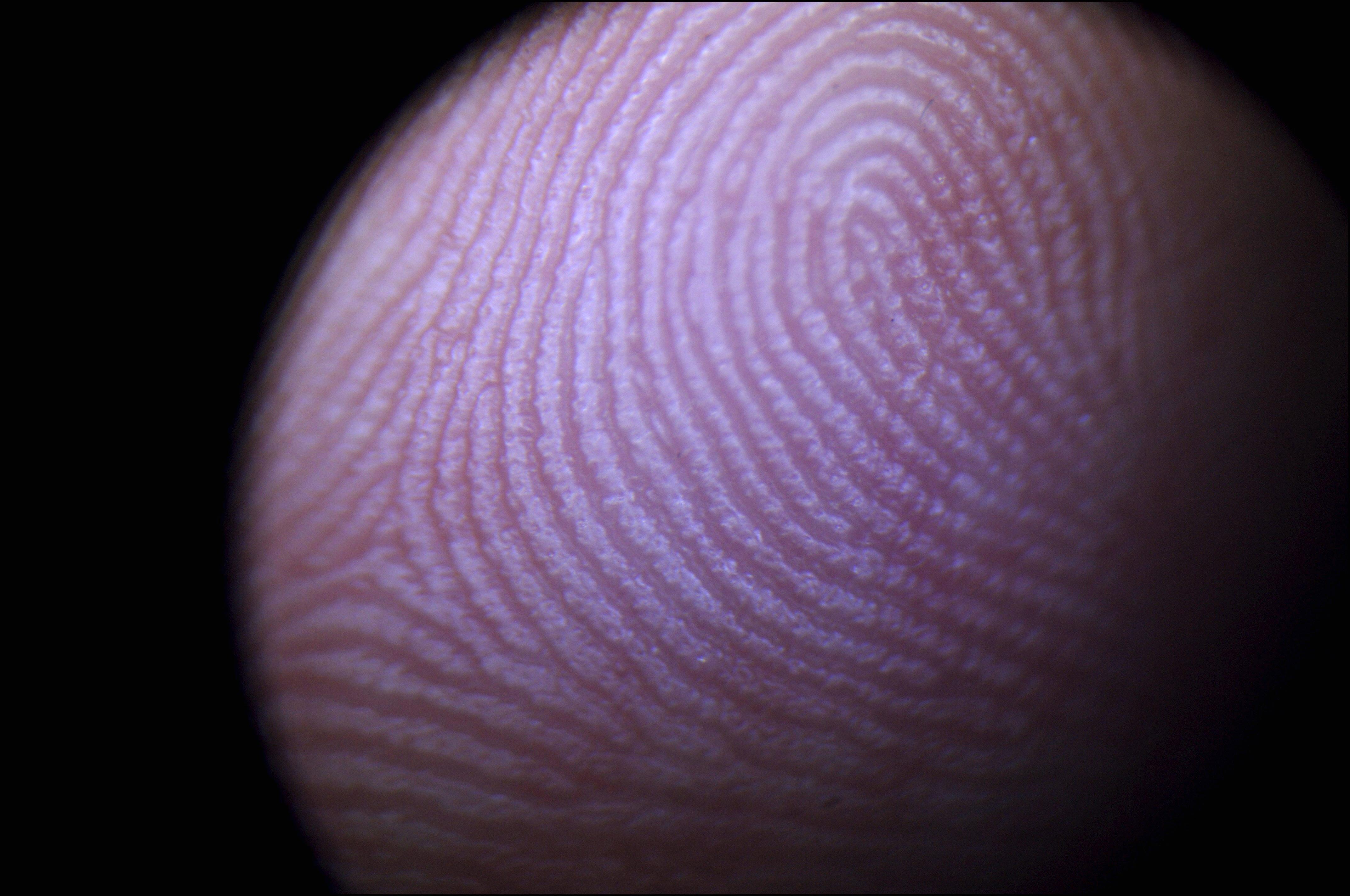 Biometrics: Body Identity. On November 29Th, 2005. In Paris, France