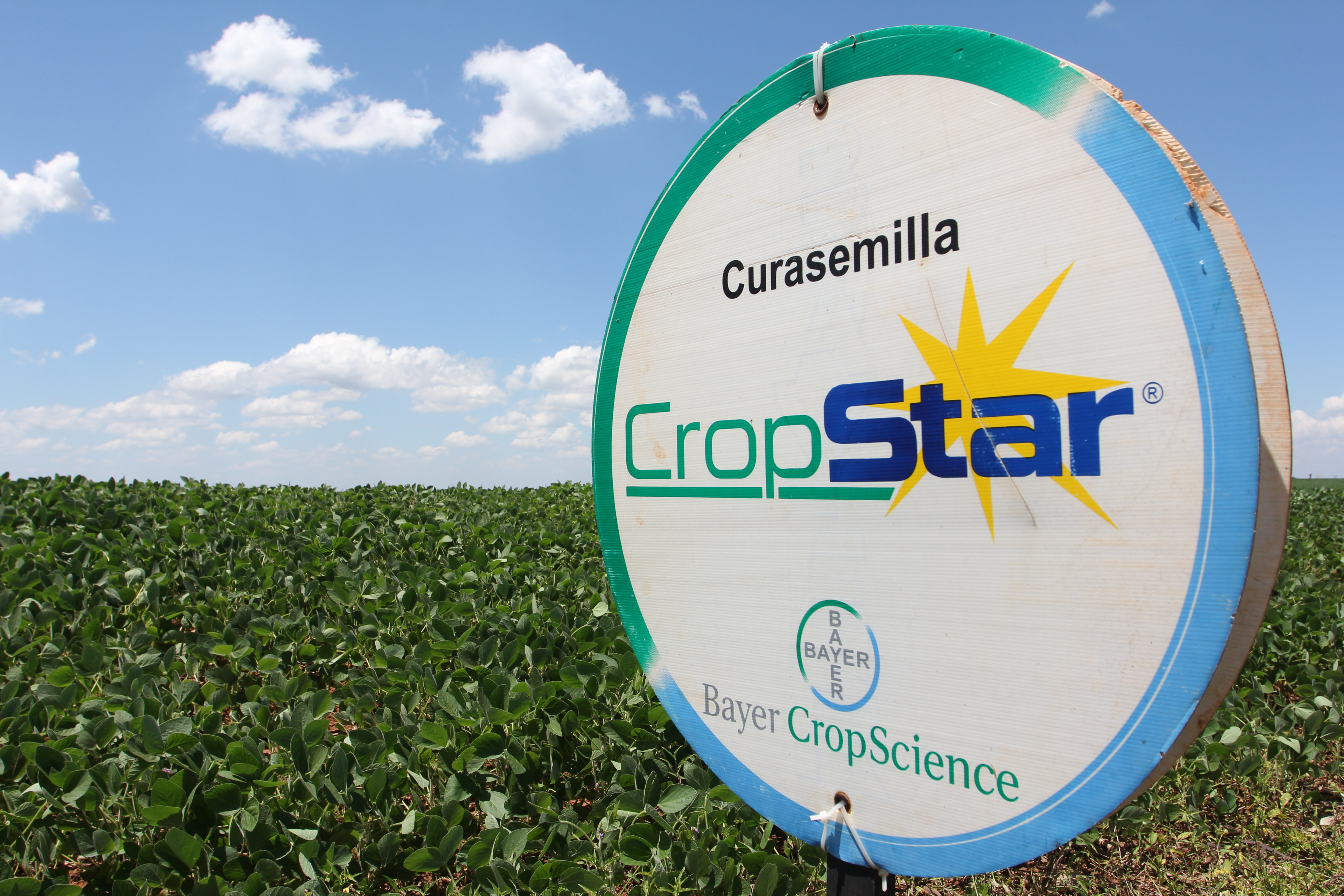 Paraguay: Advertising for the Cropstar insecticide  from Bayer cropscience