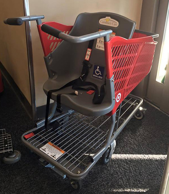 Target's new Caroline's Cart for special needs children and adults.