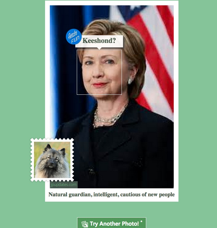 Hillary Clinton Dog Breed