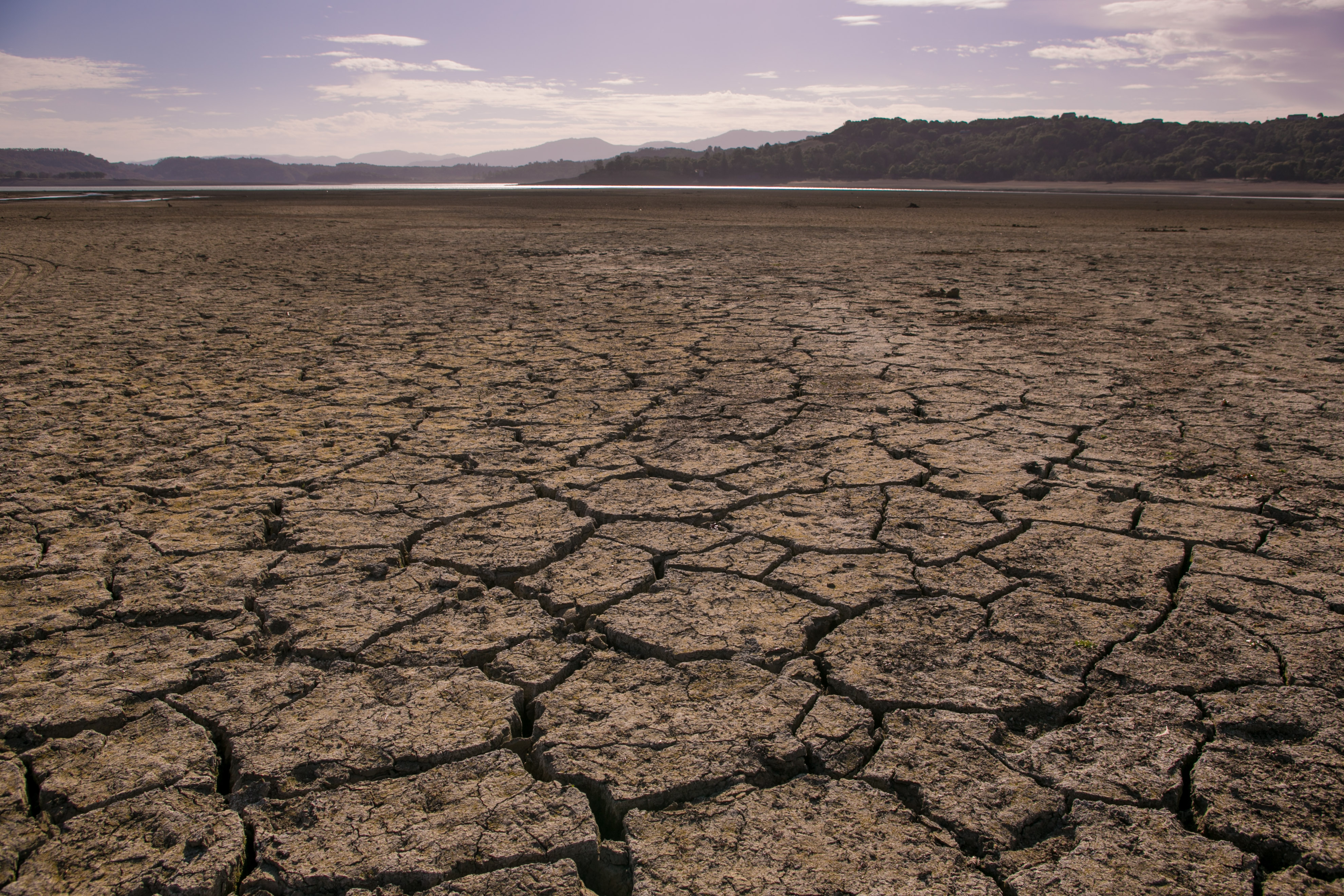 California's Drought Becomes Critical