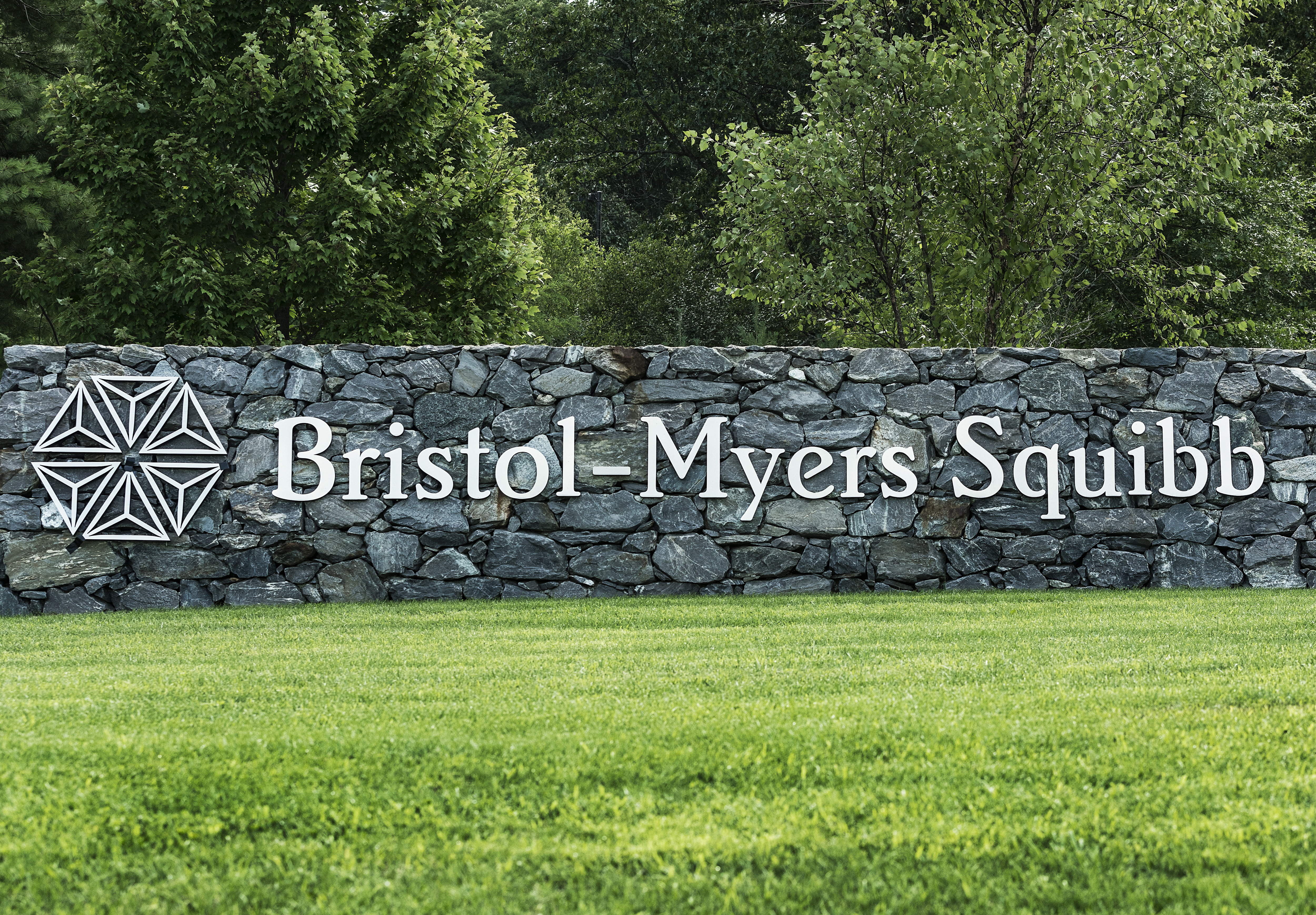 Bristol-Myers Squibb corporate and R & D offices