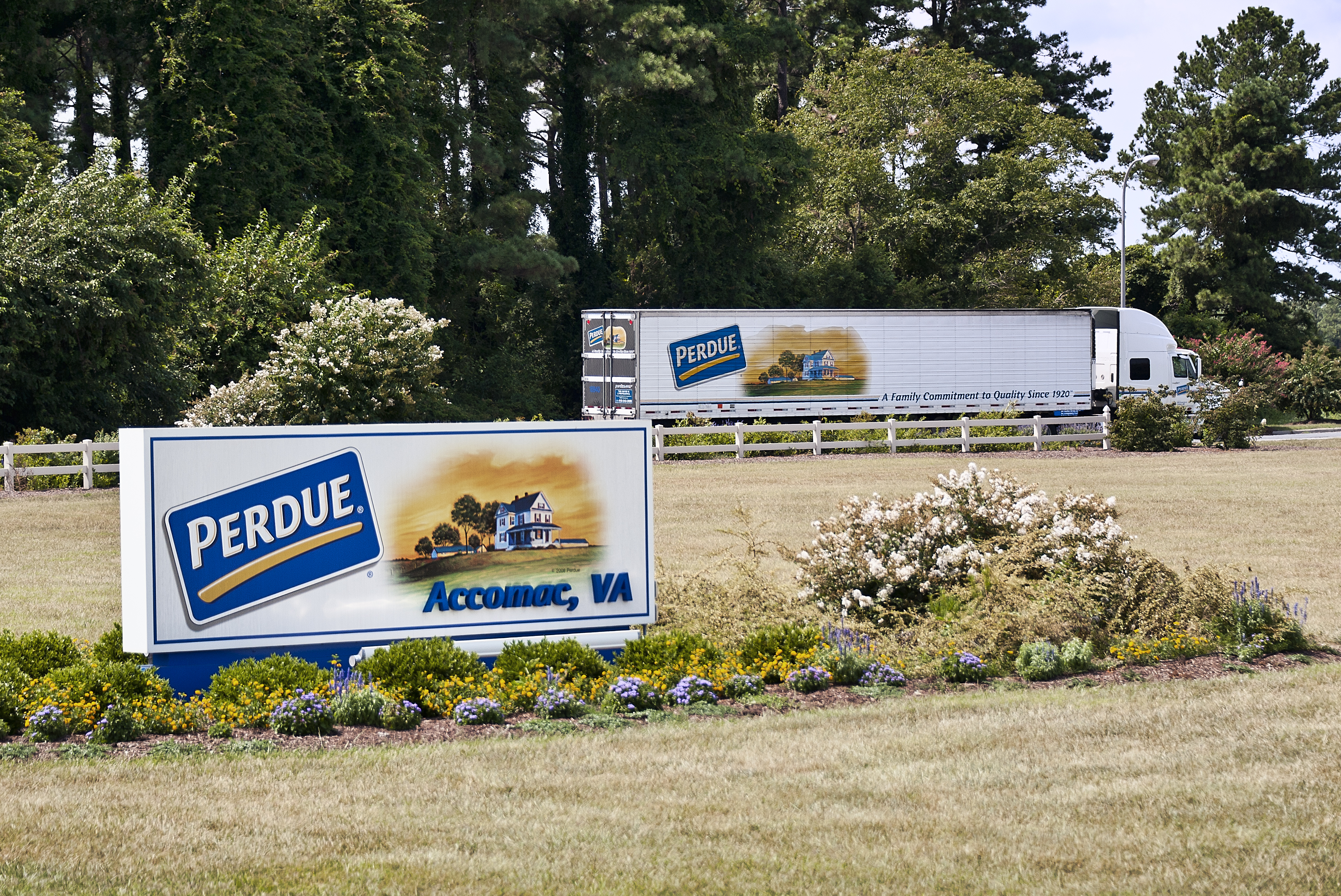 Perdue farms and chicken facility