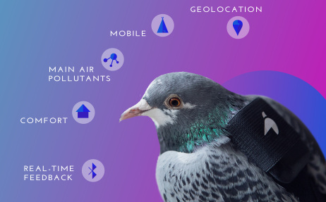 One of Plume Labs' Pigeon Air Patrollers.