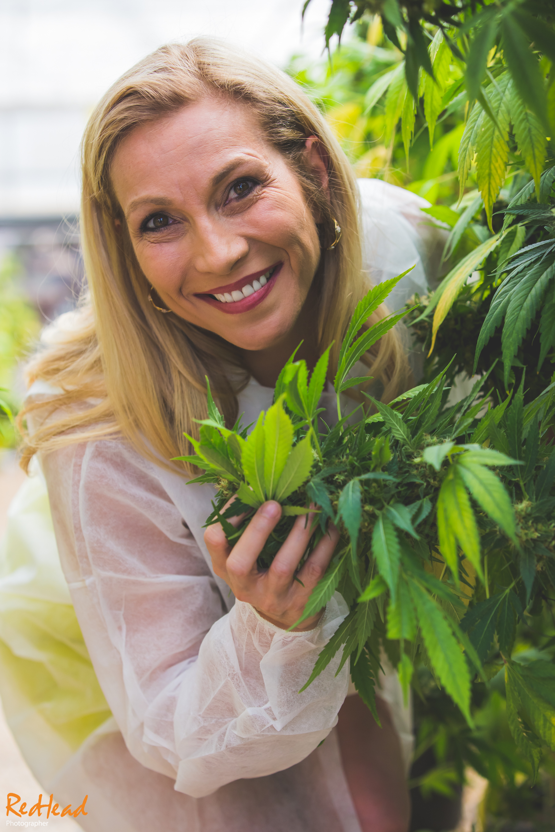 Cheryl Shuman Green House Marijuana Business Portrait