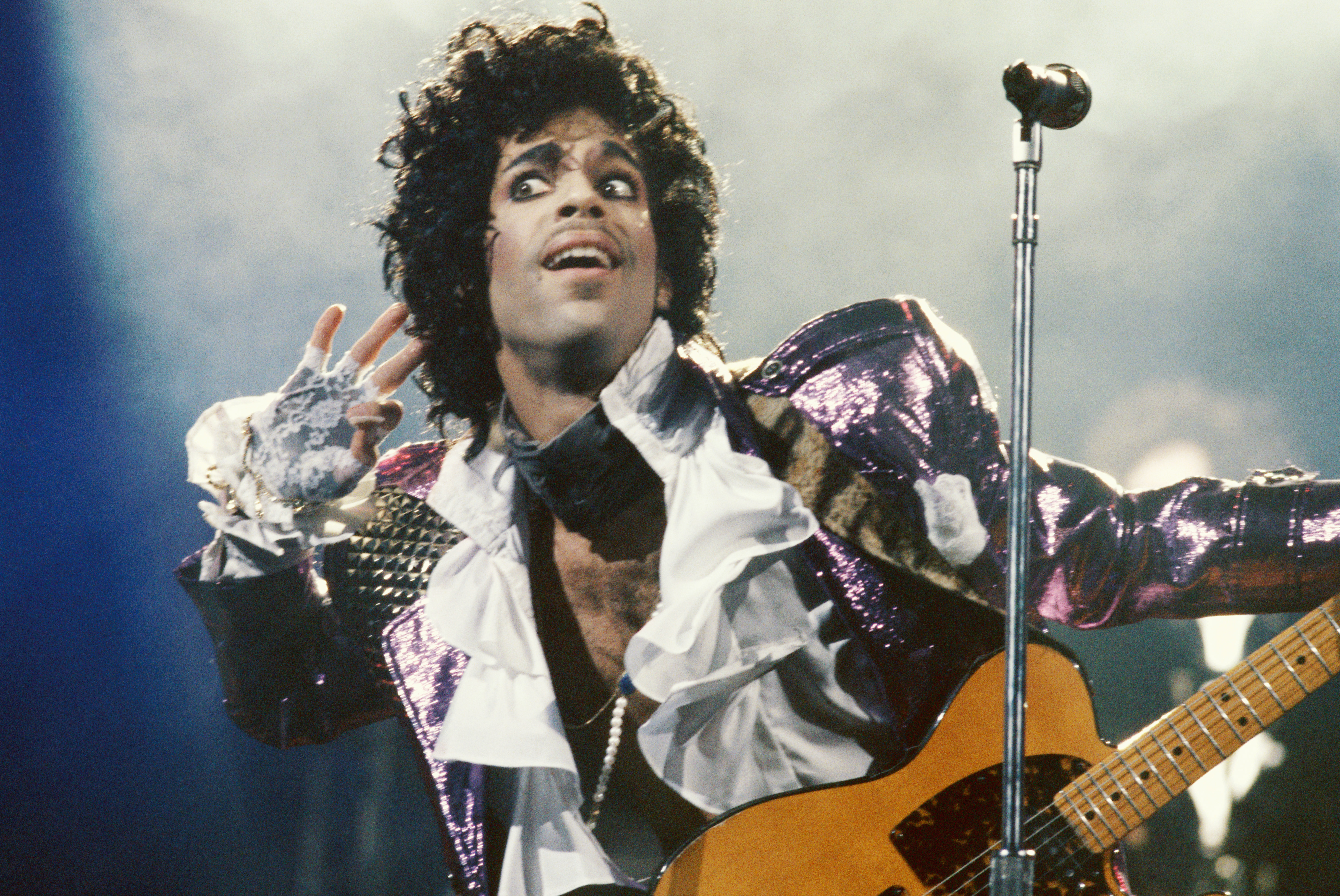 Prince Live In Concert