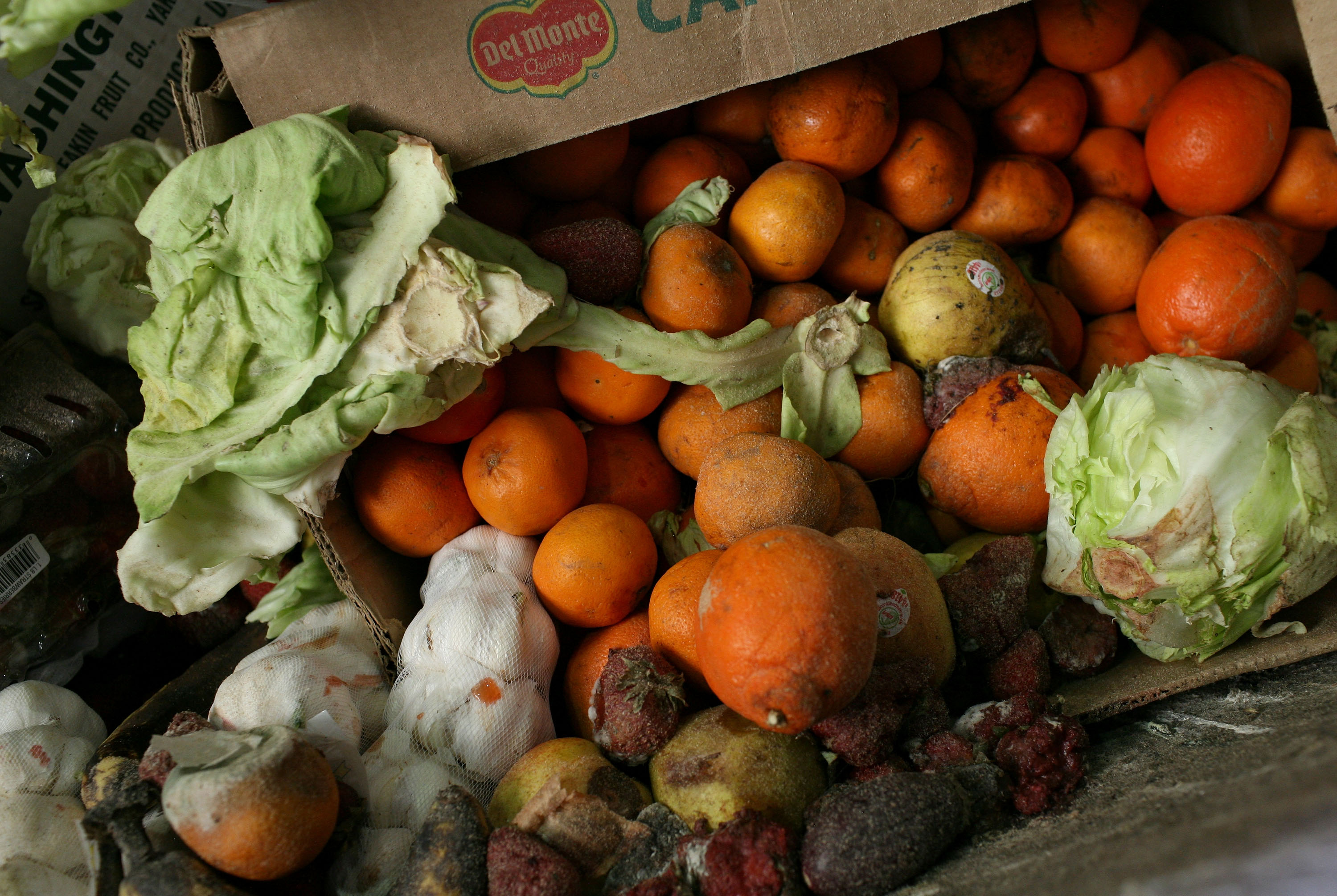 Thousands Of San Francisco Area Restaurants Turn Food Waste Into Fertilizer