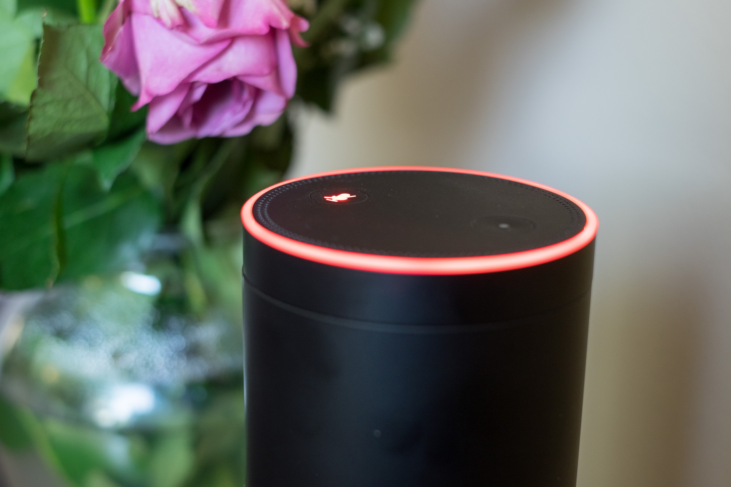 Amazon Echo with its microphone disabled.