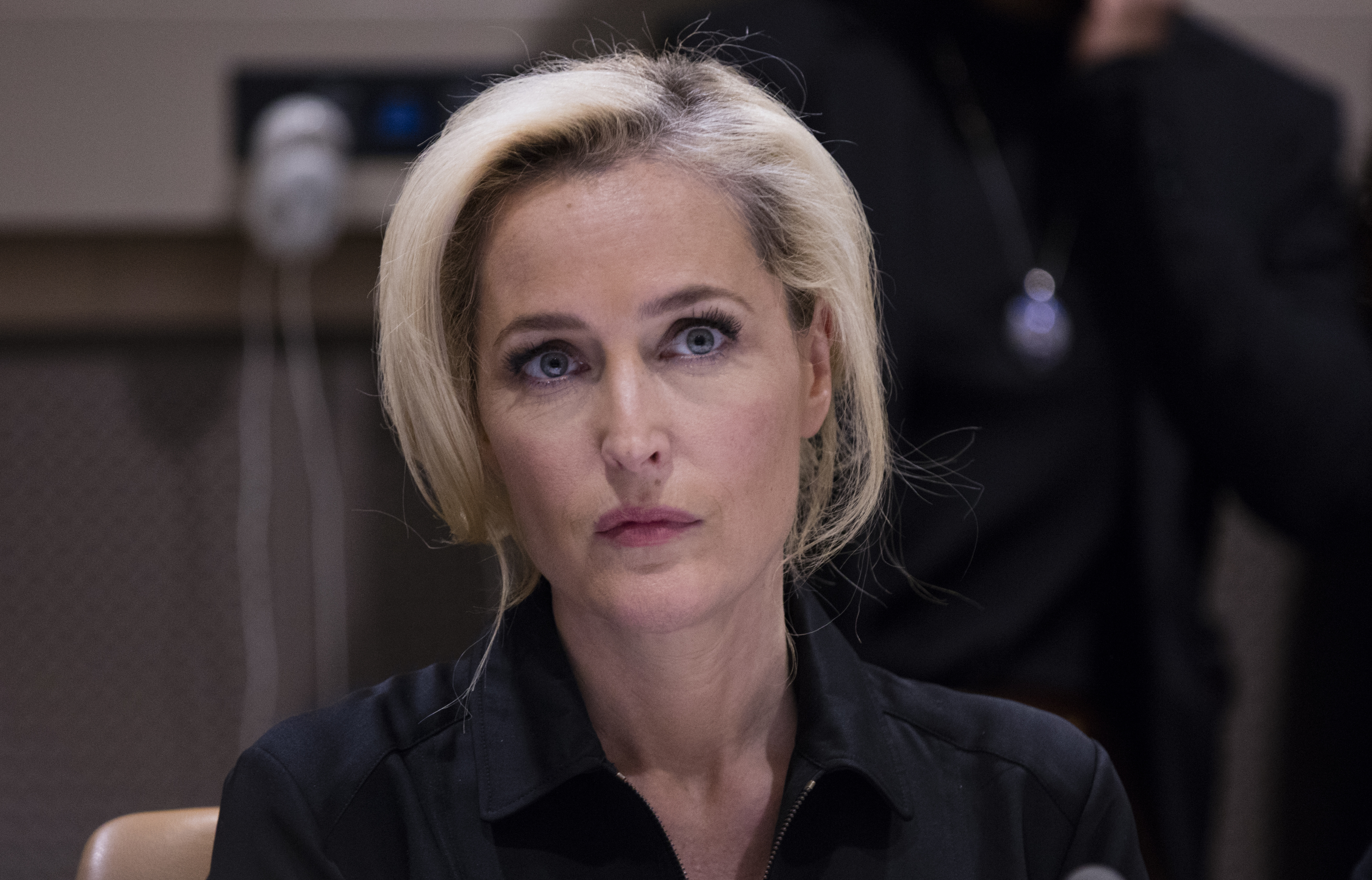Award-winning actress Gillian Anderson (from the X-Files)