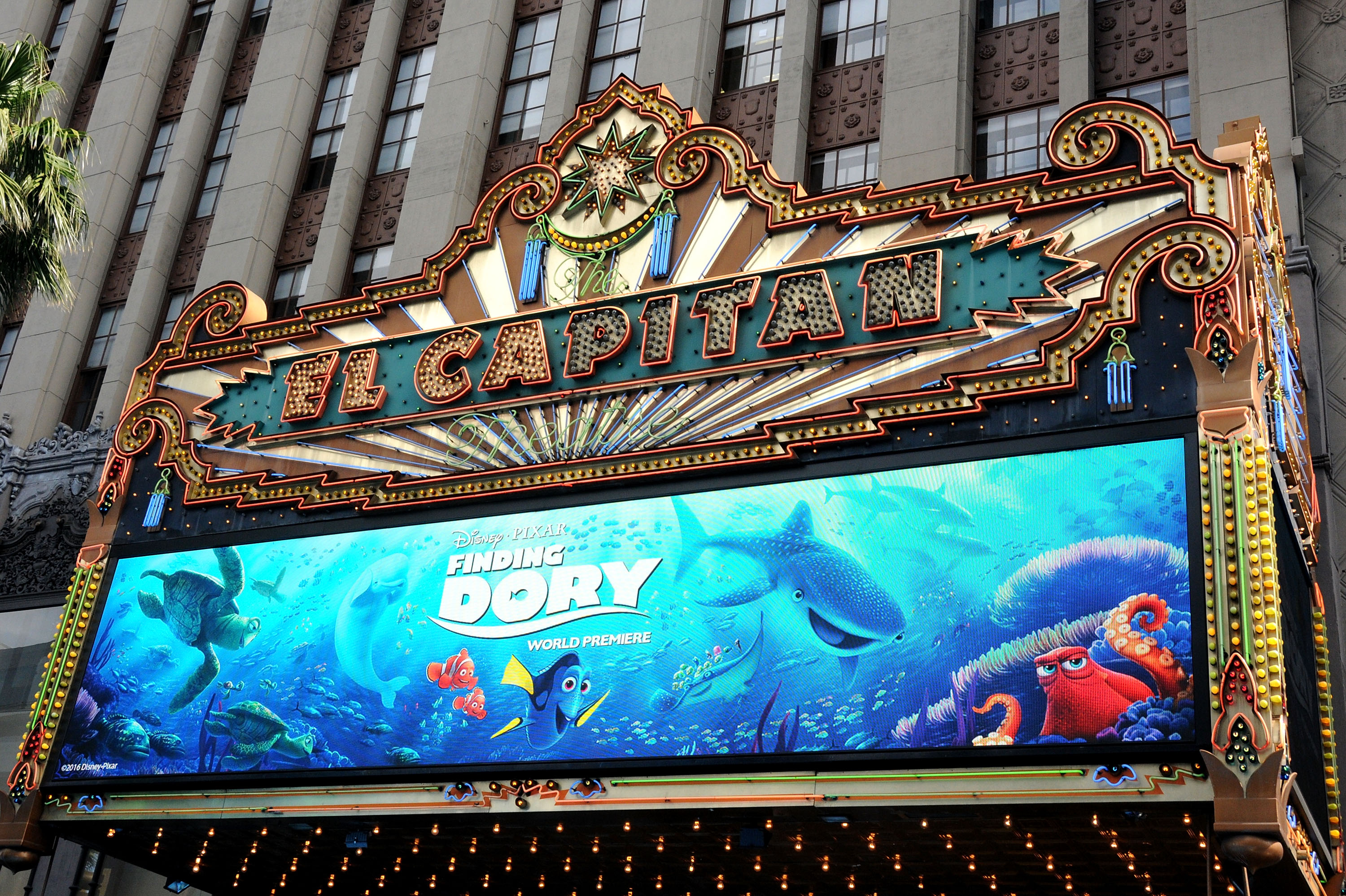 """Premiere Of Disney's """"Finding Dory"""" - Arrivals"""