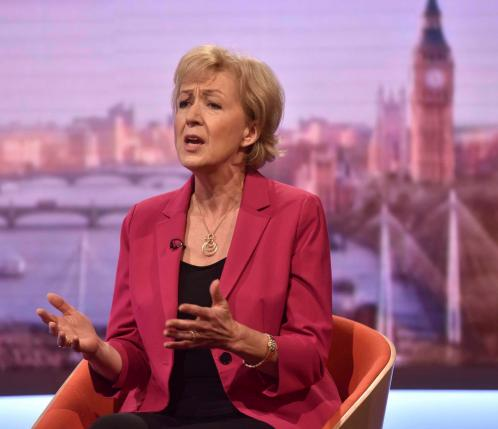 Andrea Leadsom is seen appearing on the BBC's Andrew Marr Show in this photograph received via the BBC in London