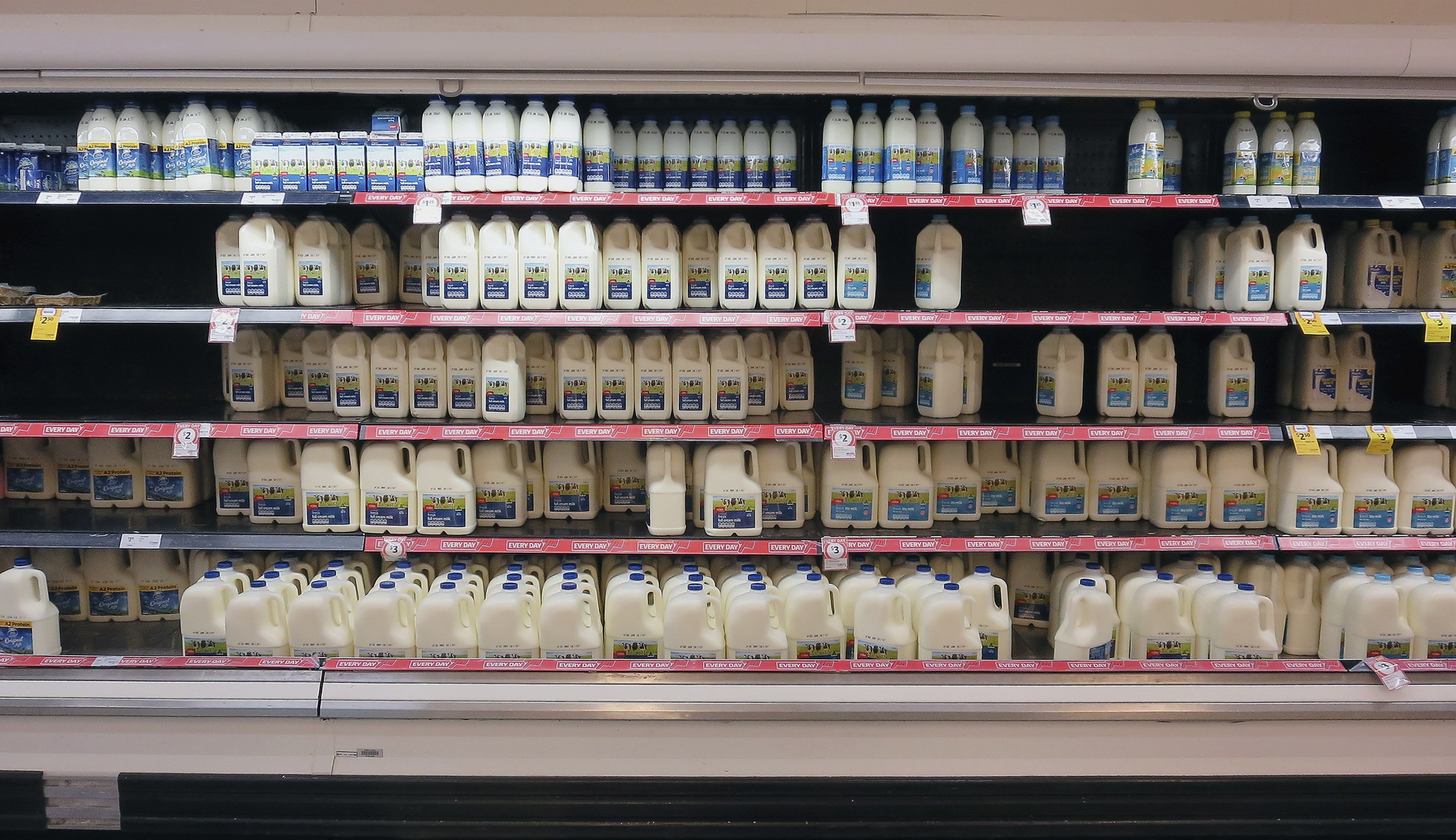 Branded Milk Stock Low As Consumers Avoid Home Brands