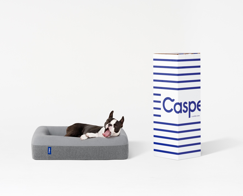 Casper launches a line of dog mattresses.