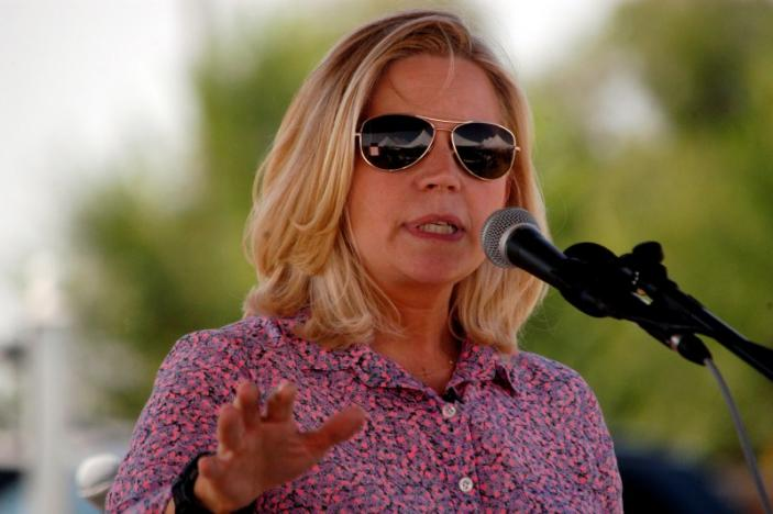 U.S. Senate candidate Liz Cheney speaks to voters during a Republican and Tea Party gathering in Emblem