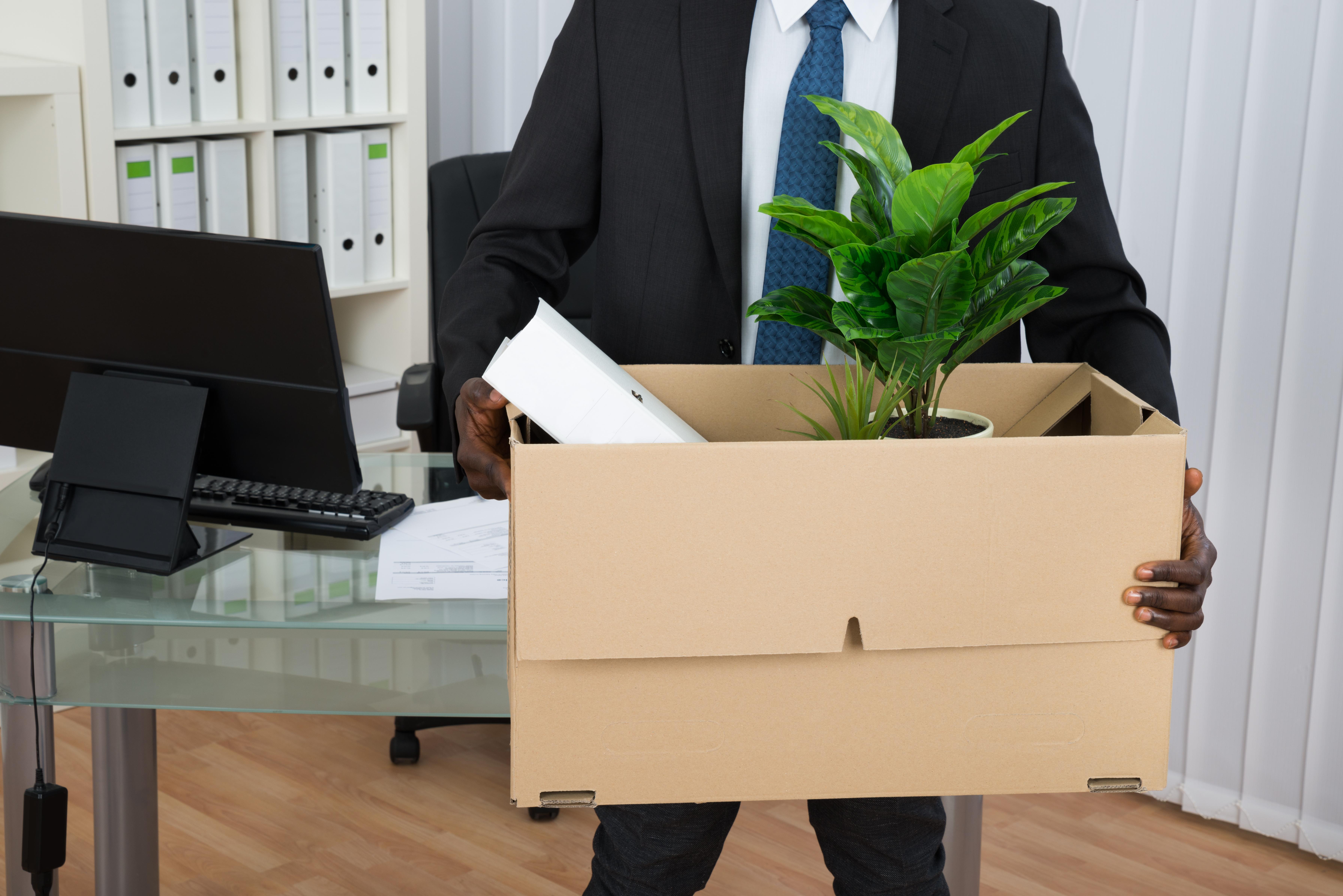 Businessman Holding Folder And Plant In Cardboard Box