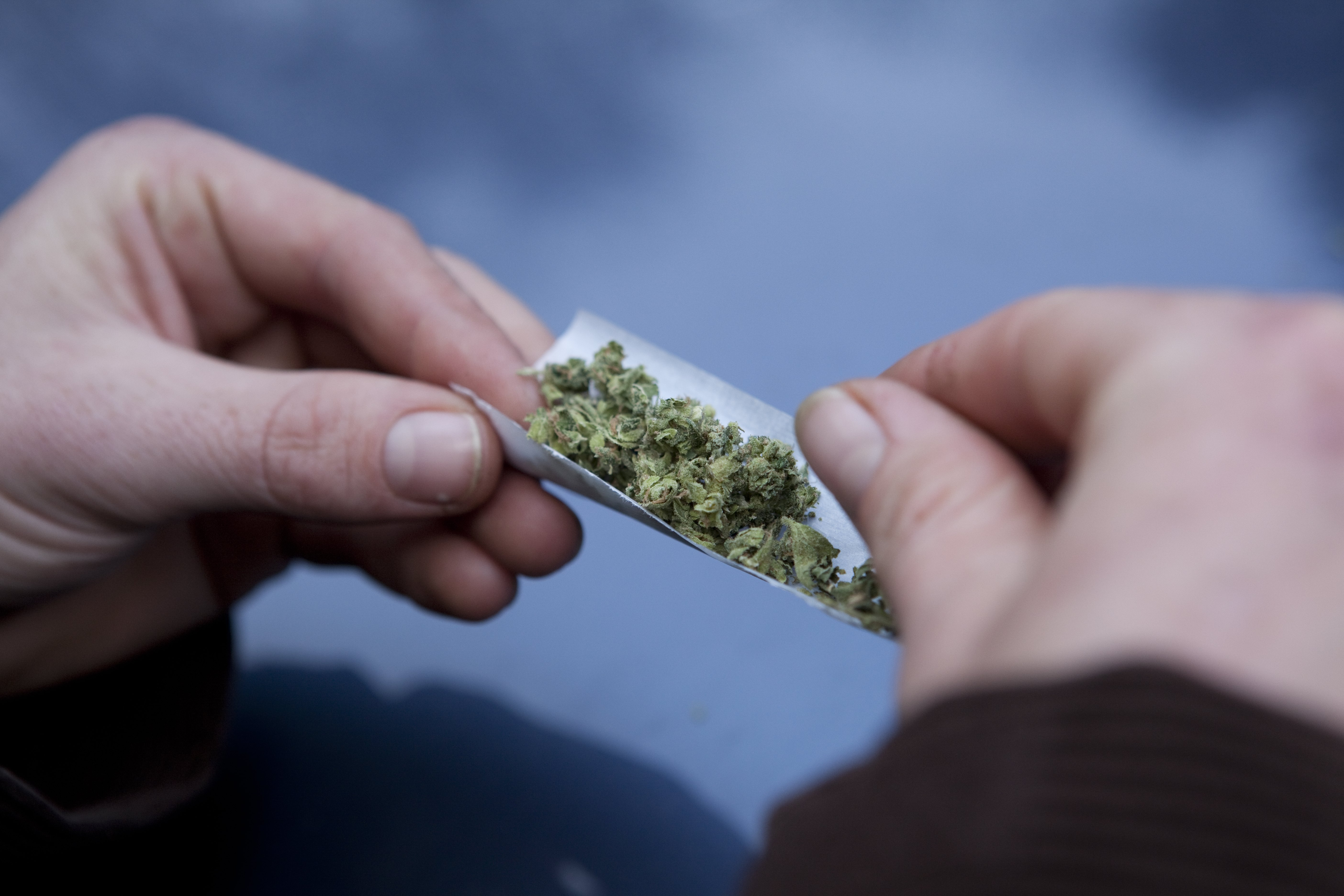 Fewer Americans perceive daily marijuana use as harmful, possibly due to a push in legalization.