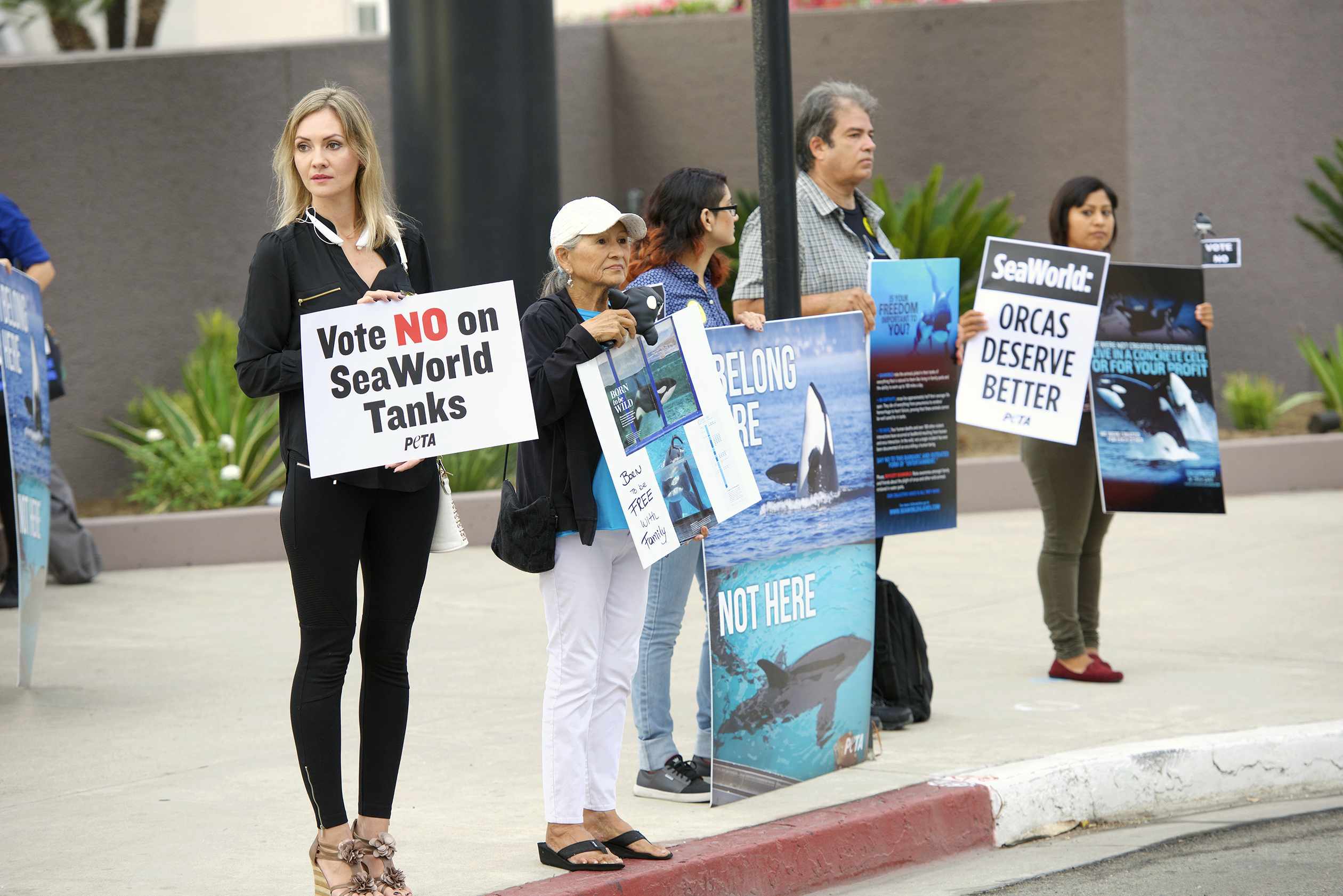 SeaWorld's trained animal shows have long spurred protests (like the one in Long Beach, California)