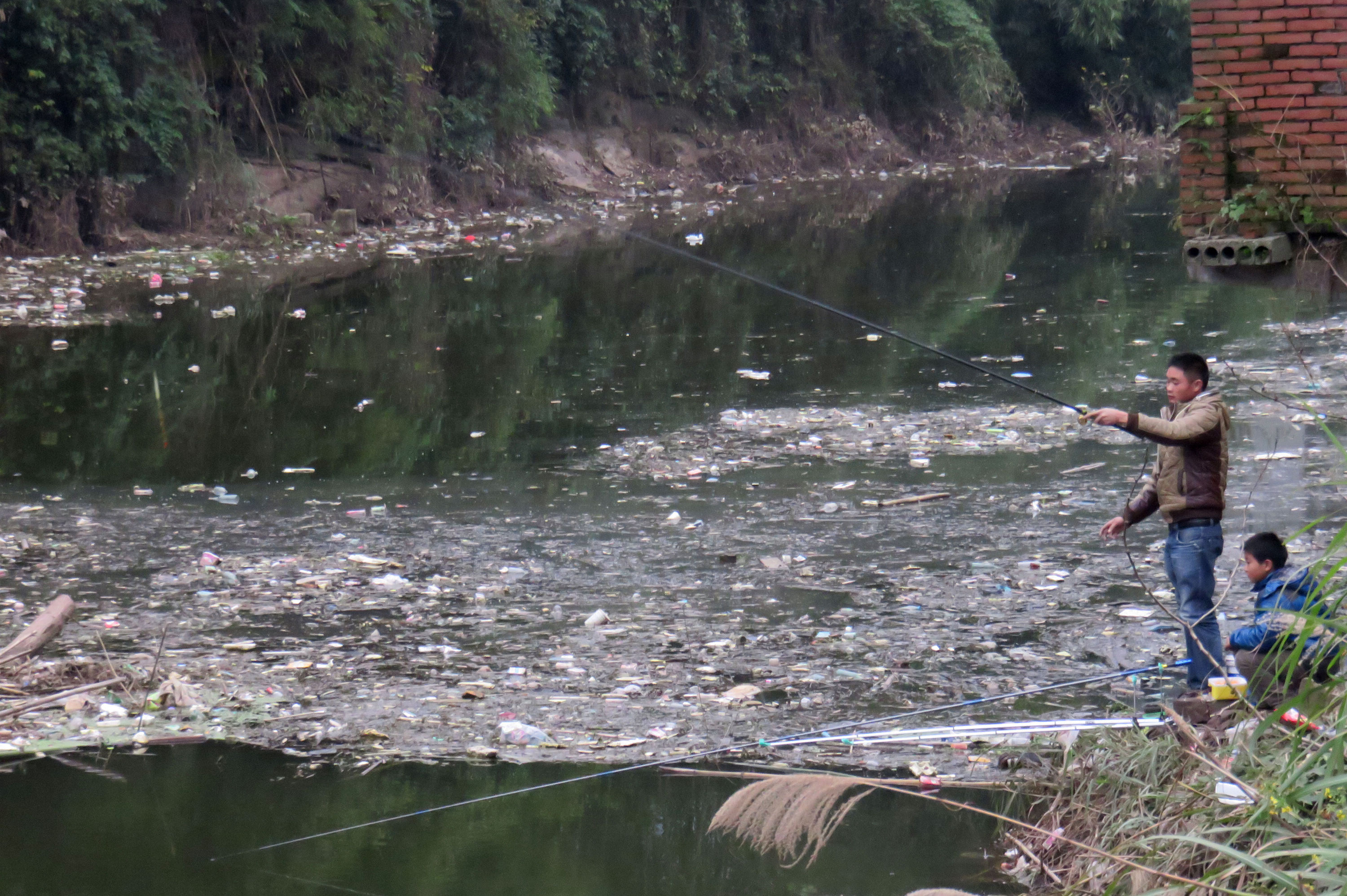 Serious Pollution Hits Reservoir In Chongqing